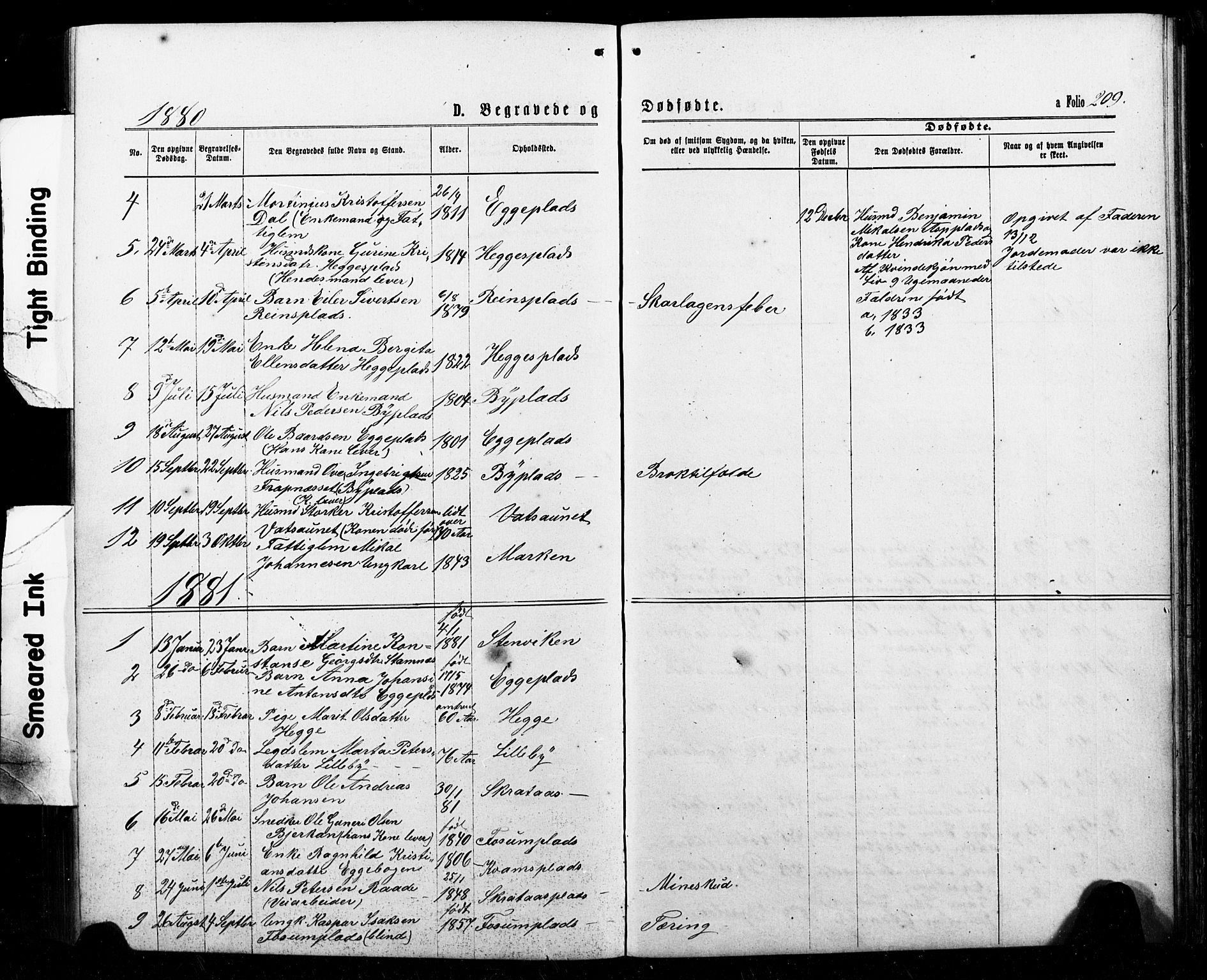 SAT, Ministerialprotokoller, klokkerbøker og fødselsregistre - Nord-Trøndelag, 740/L0380: Klokkerbok nr. 740C01, 1868-1902, s. 209