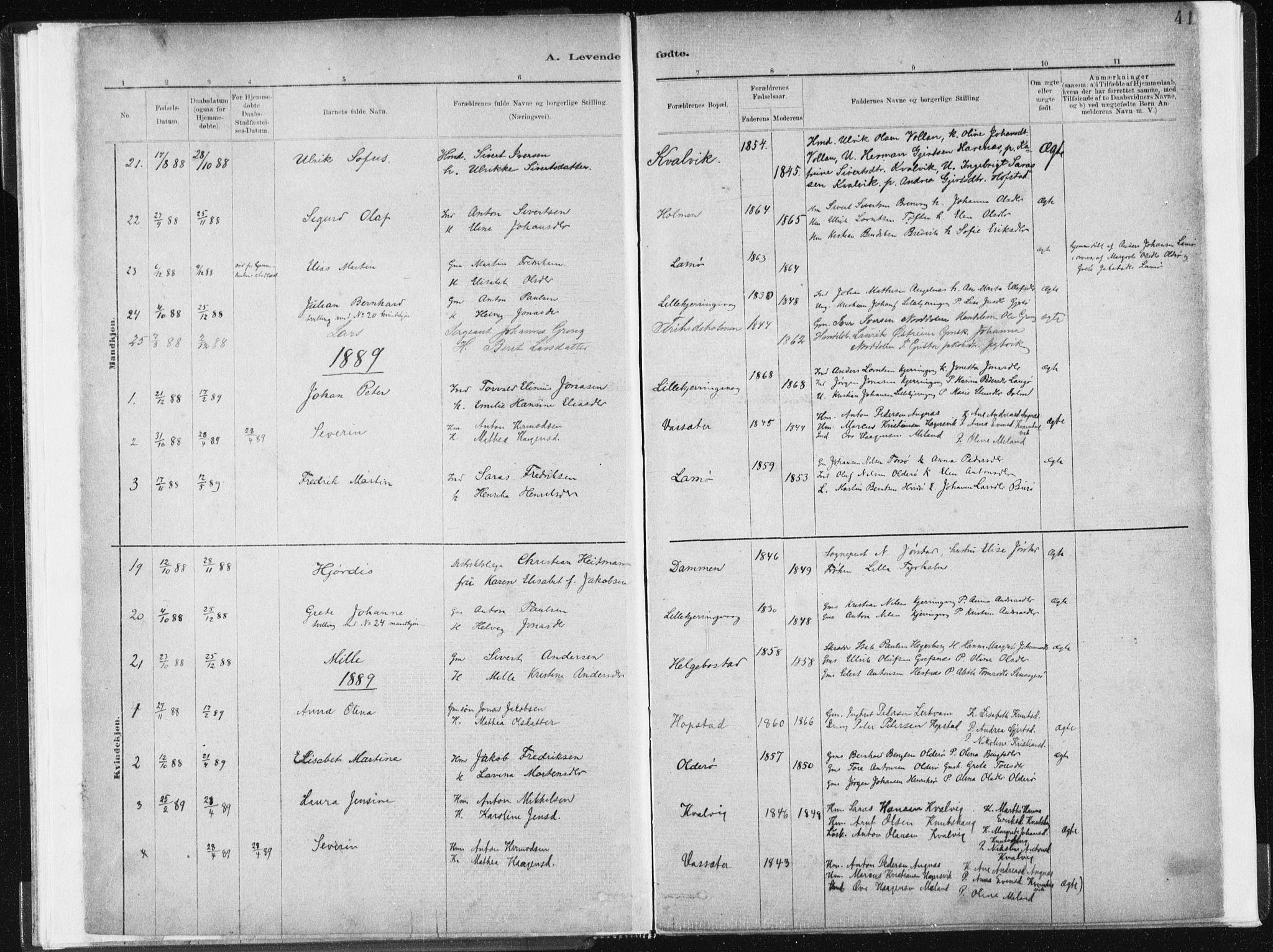 SAT, Ministerialprotokoller, klokkerbøker og fødselsregistre - Sør-Trøndelag, 634/L0533: Ministerialbok nr. 634A09, 1882-1901, s. 41
