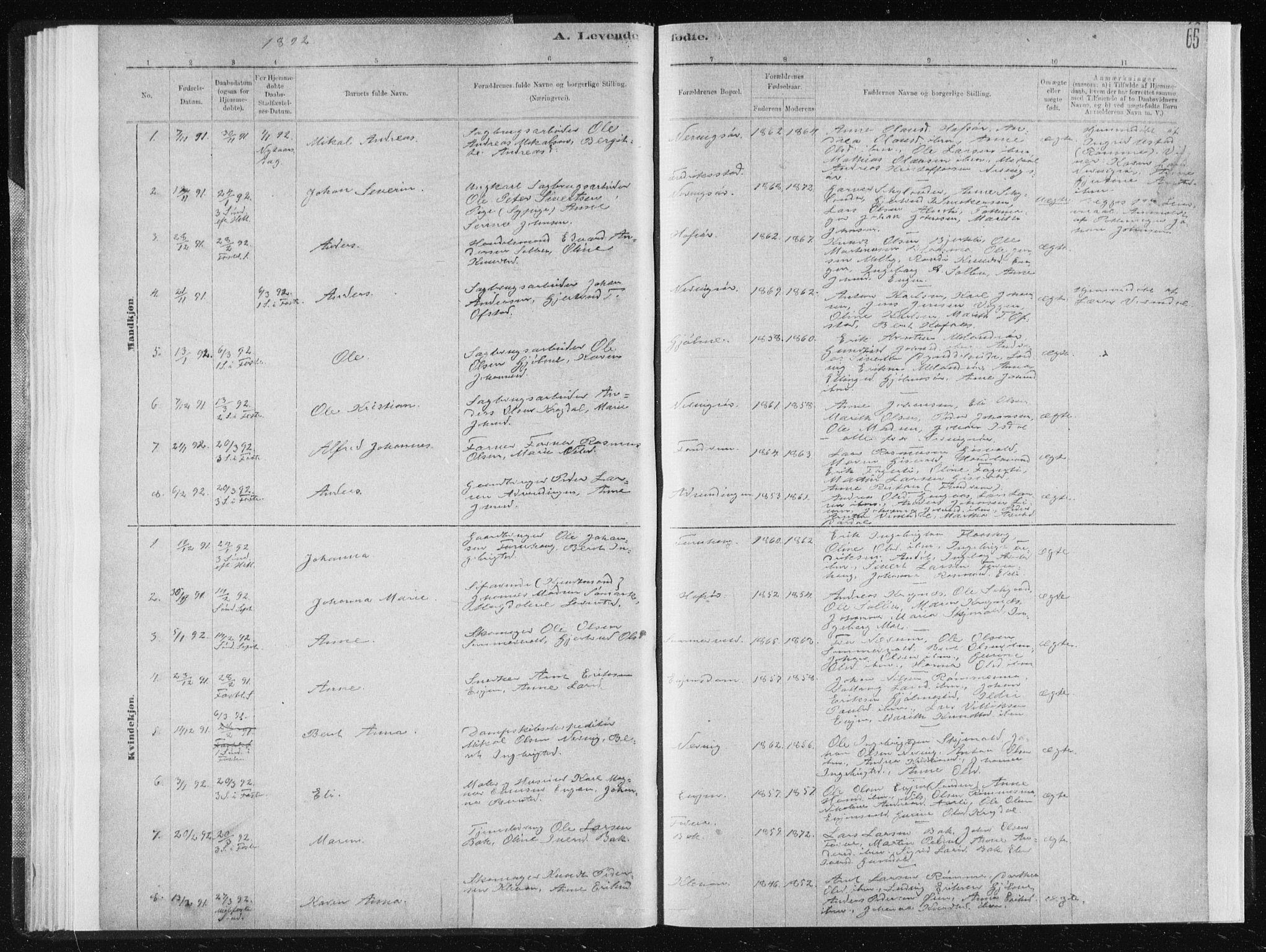 SAT, Ministerialprotokoller, klokkerbøker og fødselsregistre - Sør-Trøndelag, 668/L0818: Klokkerbok nr. 668C07, 1885-1898, s. 65