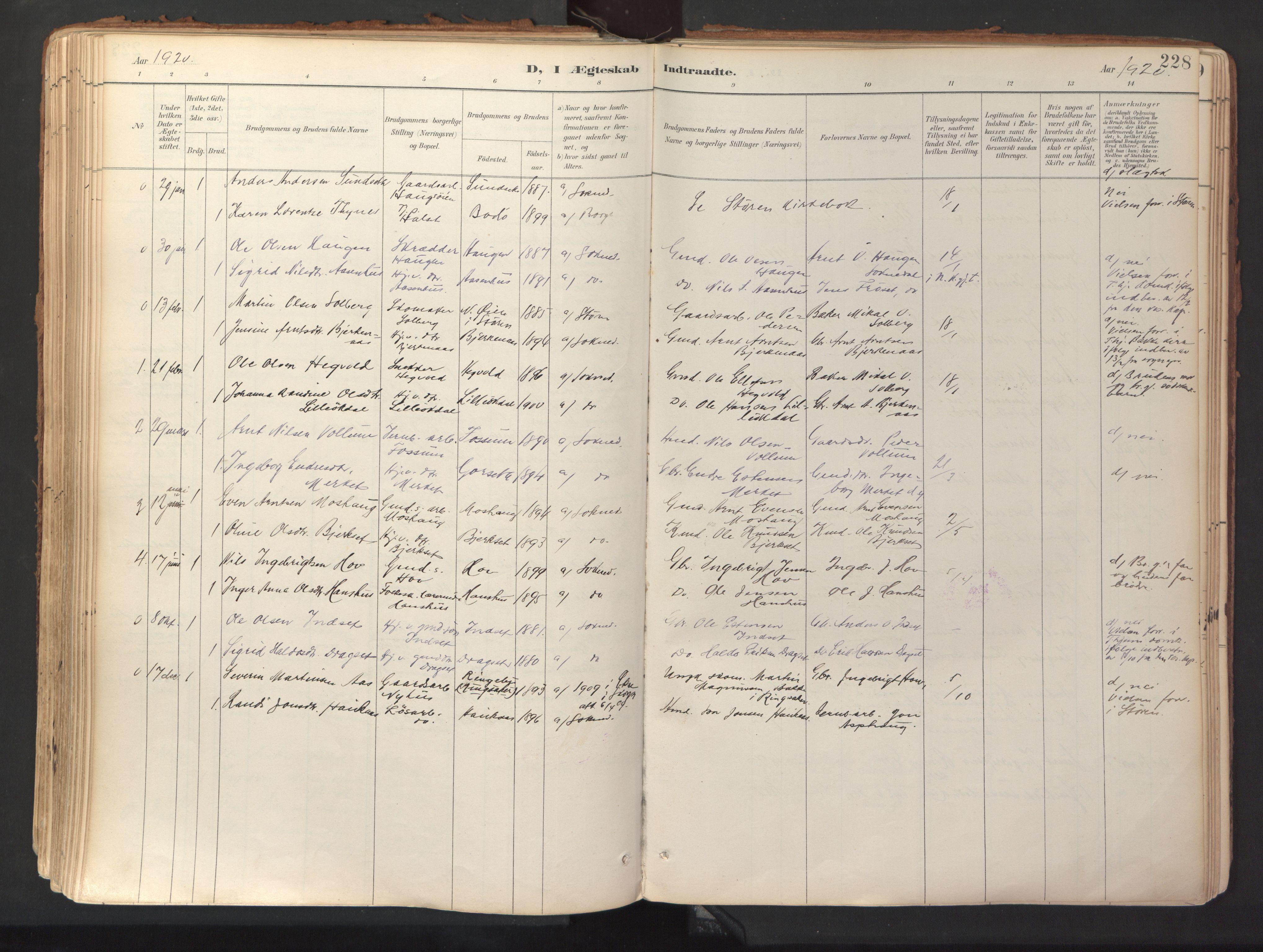 SAT, Ministerialprotokoller, klokkerbøker og fødselsregistre - Sør-Trøndelag, 689/L1041: Ministerialbok nr. 689A06, 1891-1923, s. 228