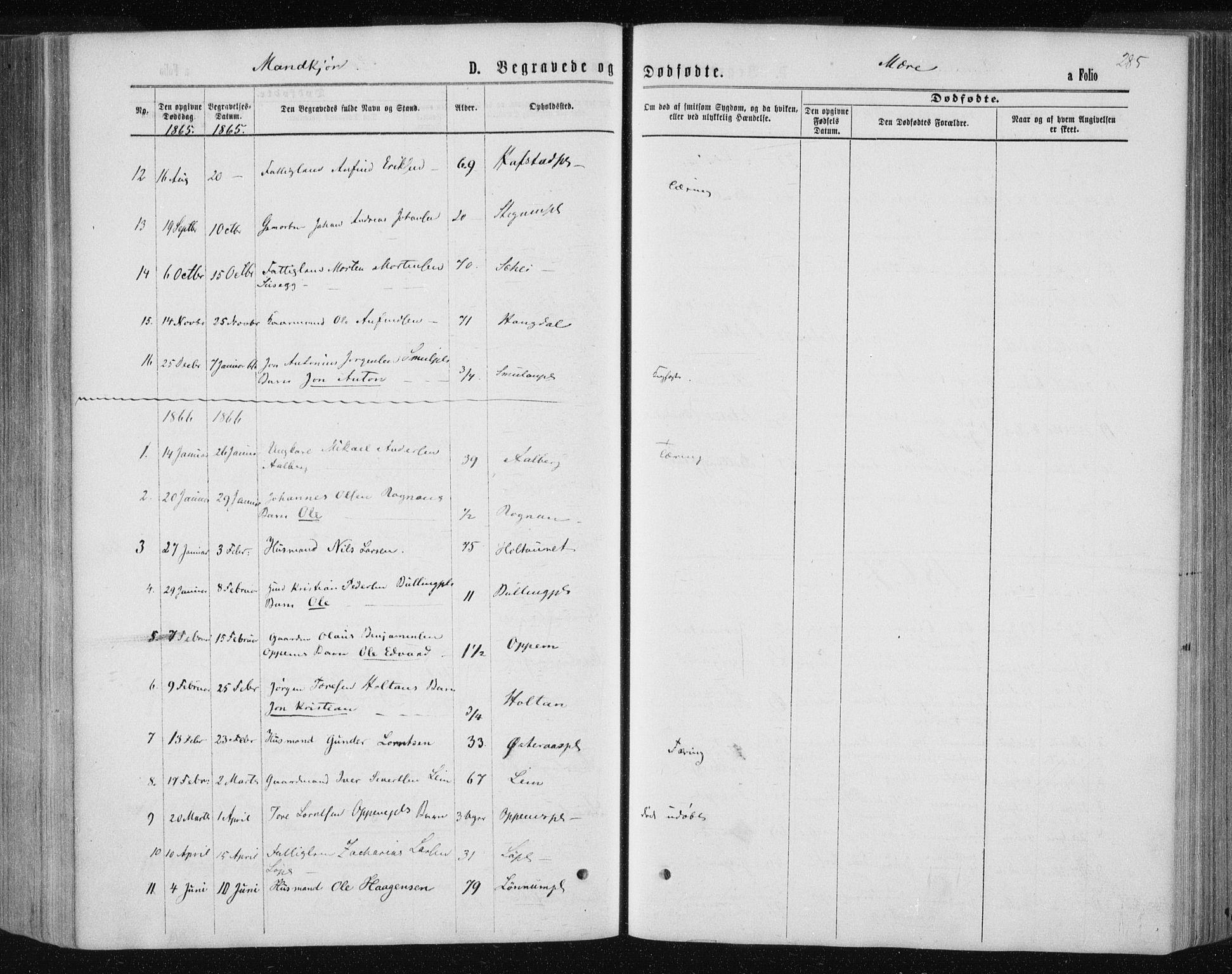 SAT, Ministerialprotokoller, klokkerbøker og fødselsregistre - Nord-Trøndelag, 735/L0345: Ministerialbok nr. 735A08 /1, 1863-1872, s. 285