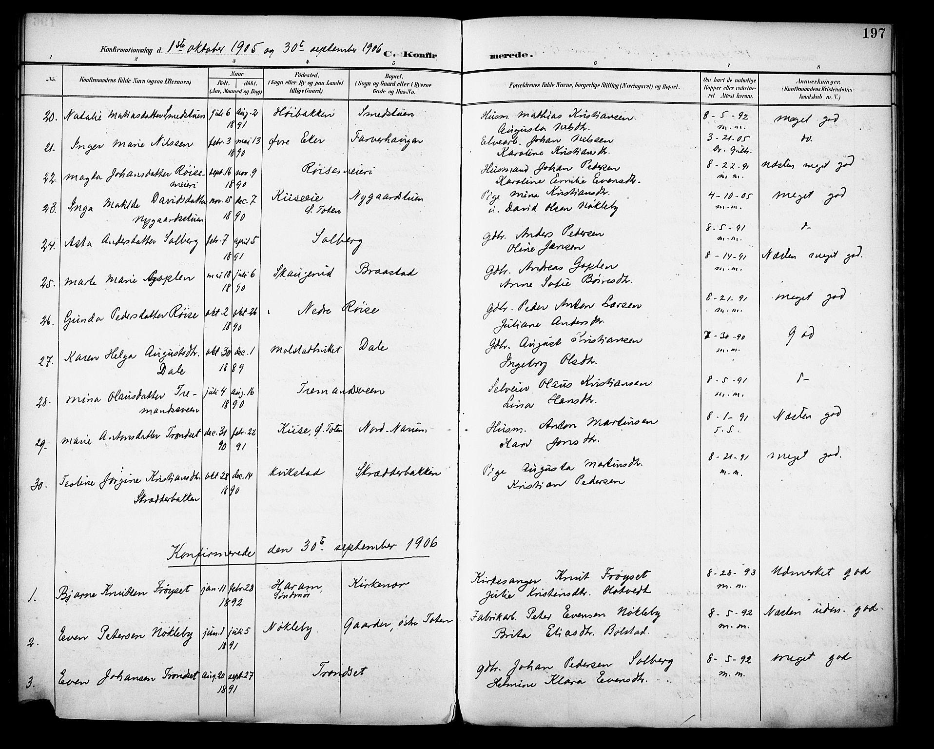SAH, Vestre Toten prestekontor, H/Ha/Haa/L0013: Ministerialbok nr. 13, 1895-1911, s. 197