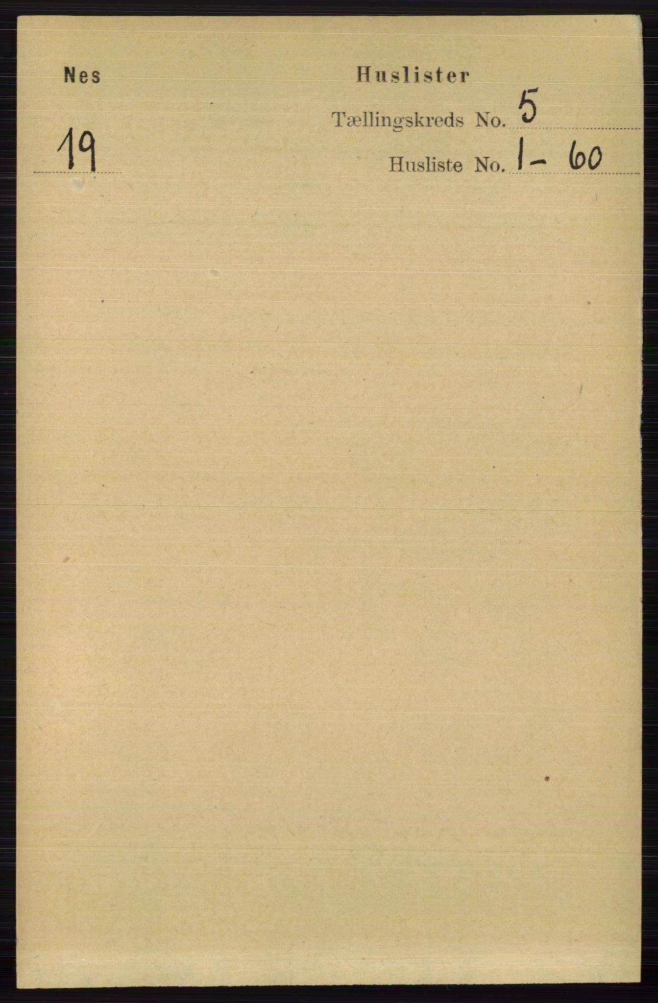 RA, Folketelling 1891 for 0616 Nes herred, 1891, s. 2573