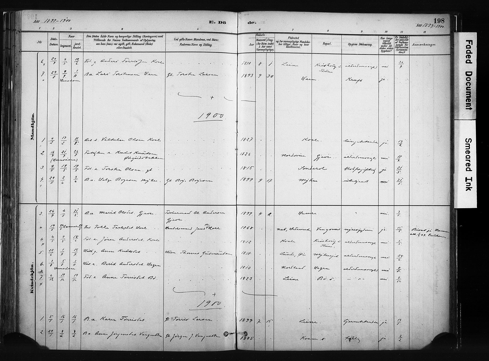 SAH, Vang prestekontor, Valdres, Ministerialbok nr. 8, 1882-1910, s. 198