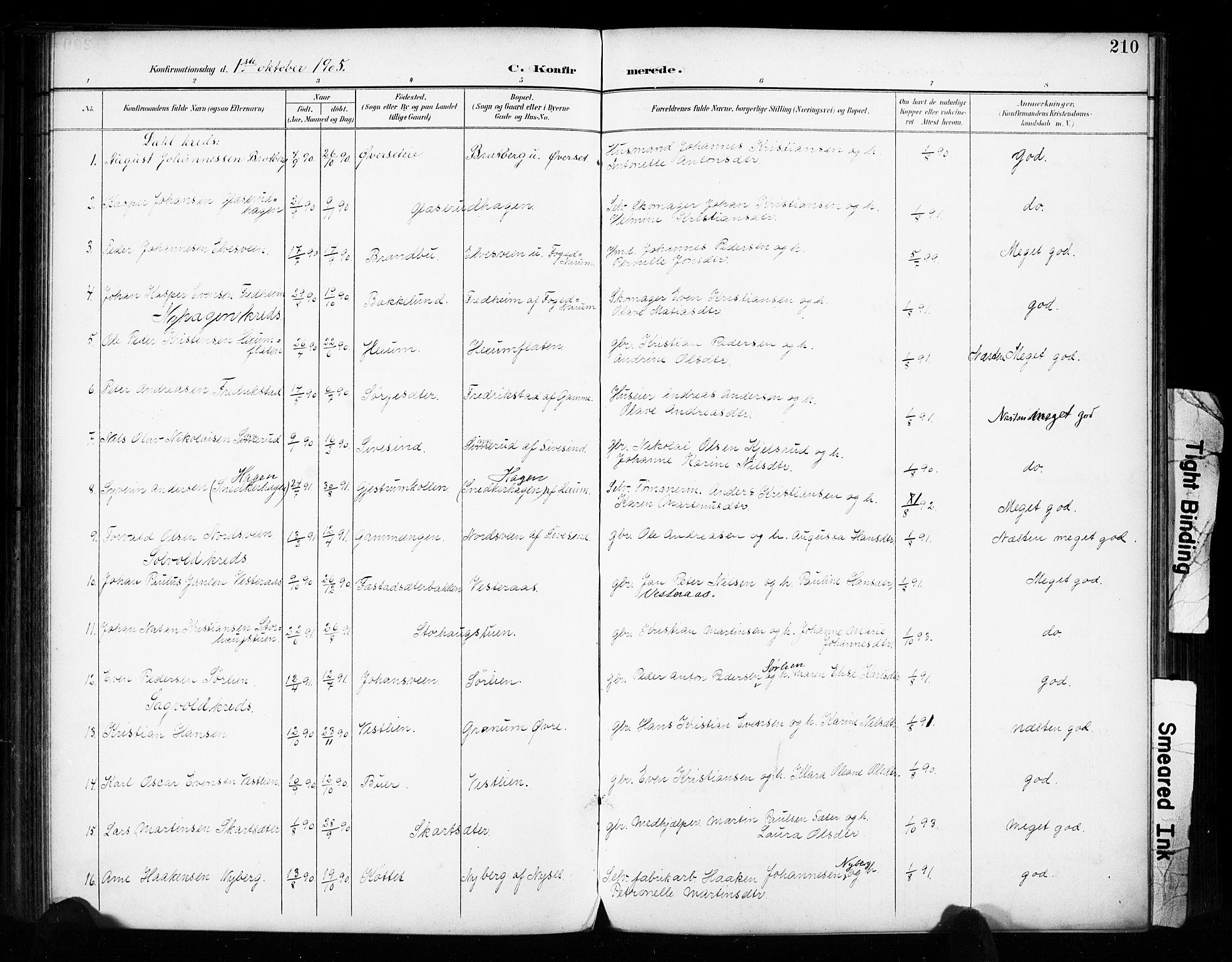 SAH, Vestre Toten prestekontor, Ministerialbok nr. 11, 1895-1906, s. 210