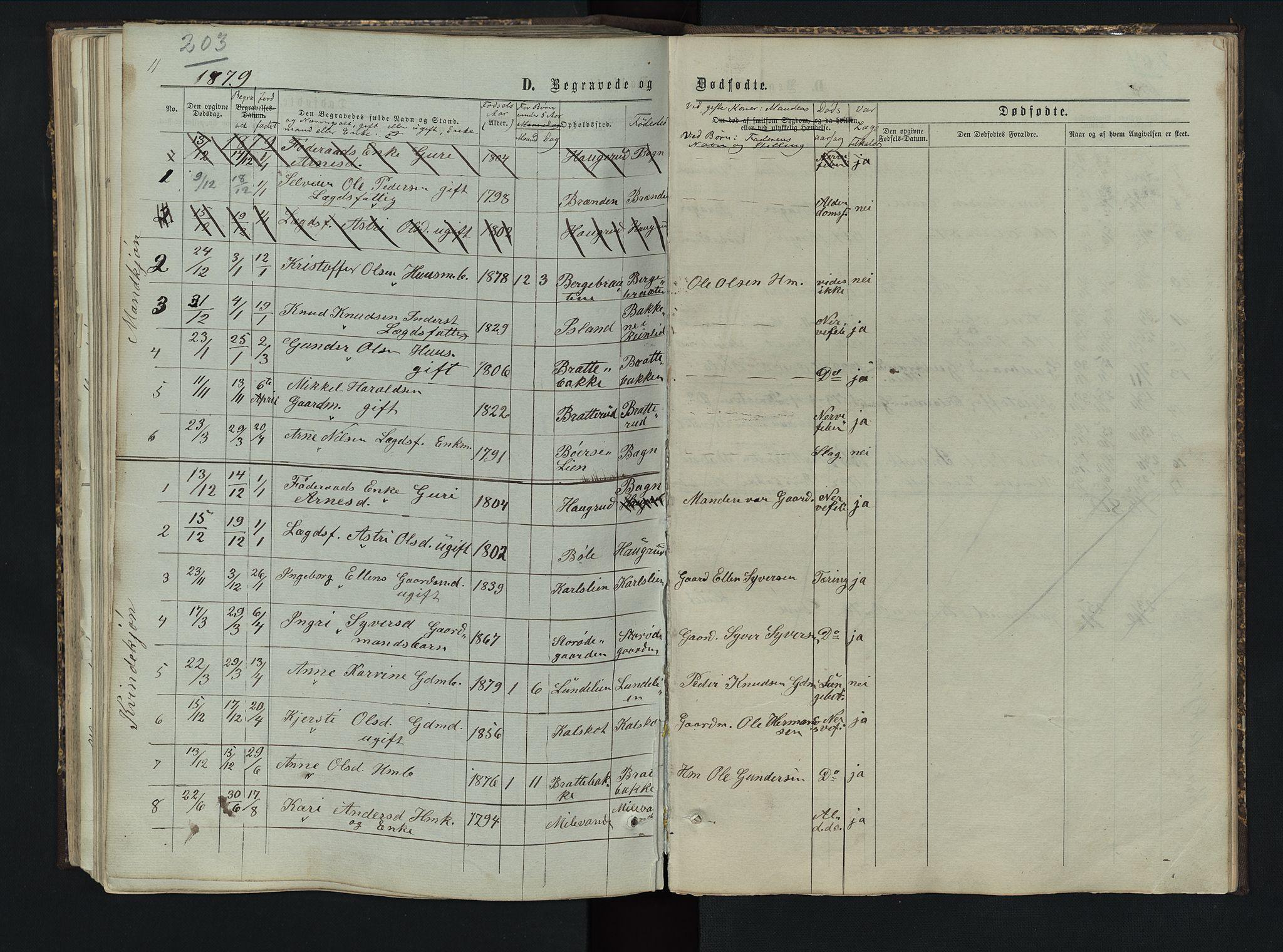 SAH, Sør-Aurdal prestekontor, Klokkerbok nr. 5, 1866-1893, s. 203