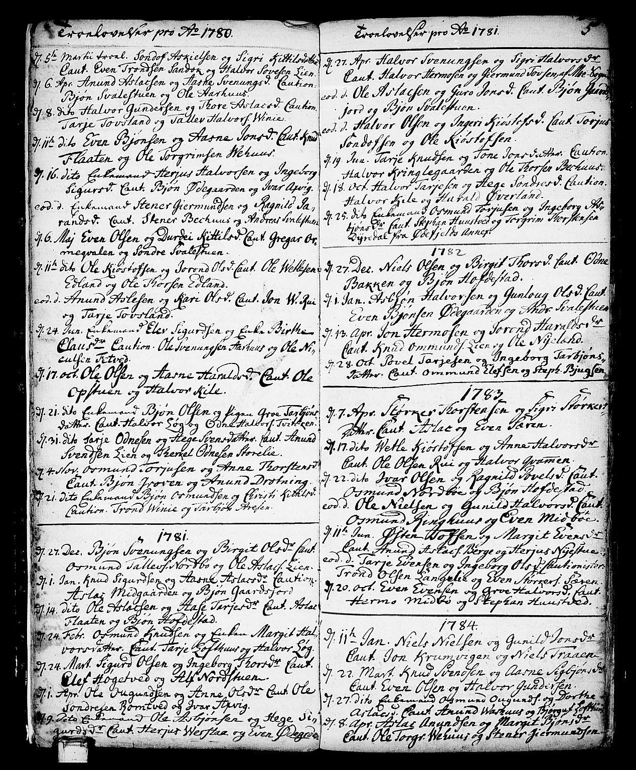 SAKO, Vinje kirkebøker, F/Fa/L0002: Ministerialbok nr. I 2, 1767-1814, s. 5