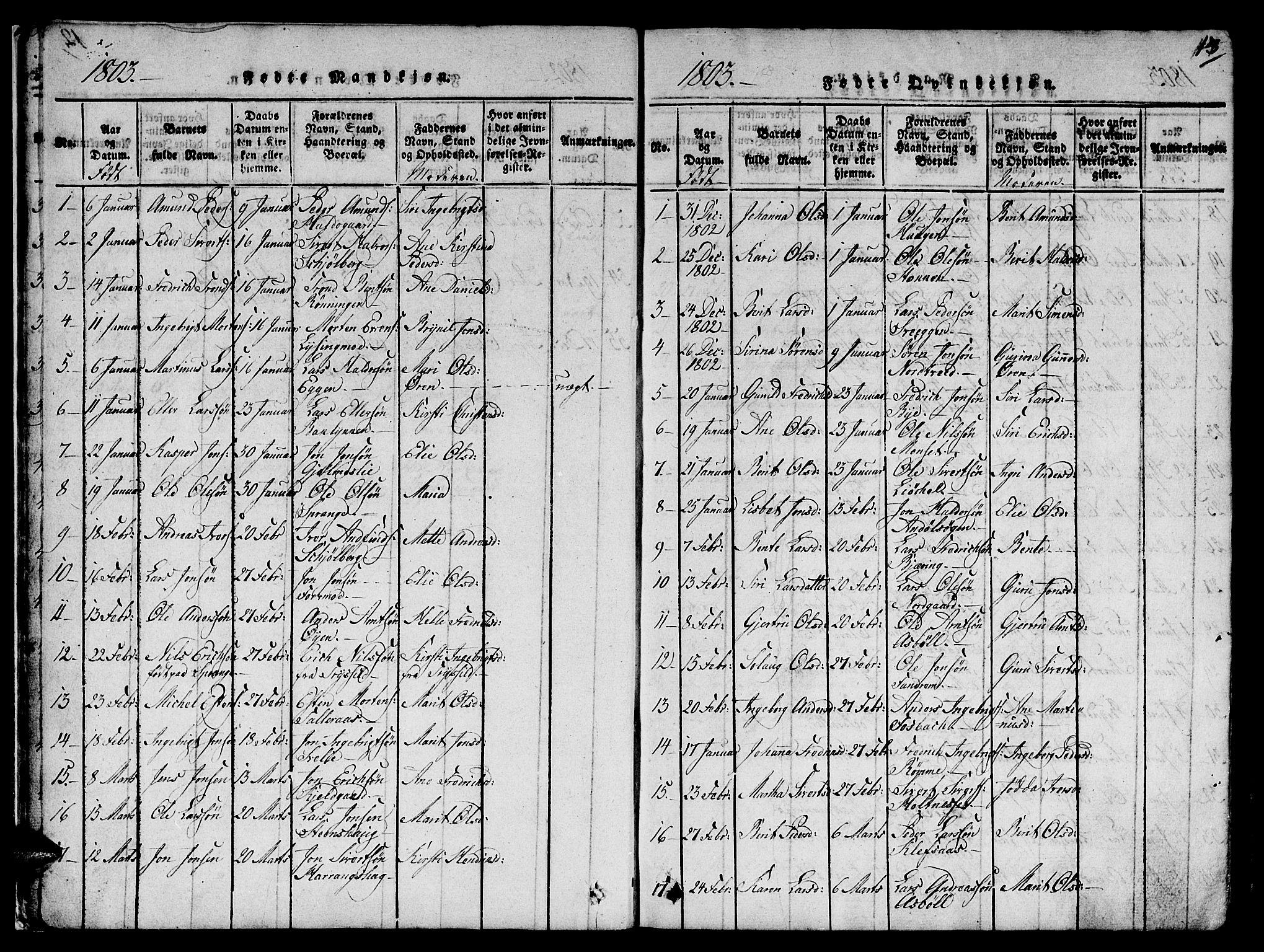 SAT, Ministerialprotokoller, klokkerbøker og fødselsregistre - Sør-Trøndelag, 668/L0803: Ministerialbok nr. 668A03, 1800-1826, s. 13
