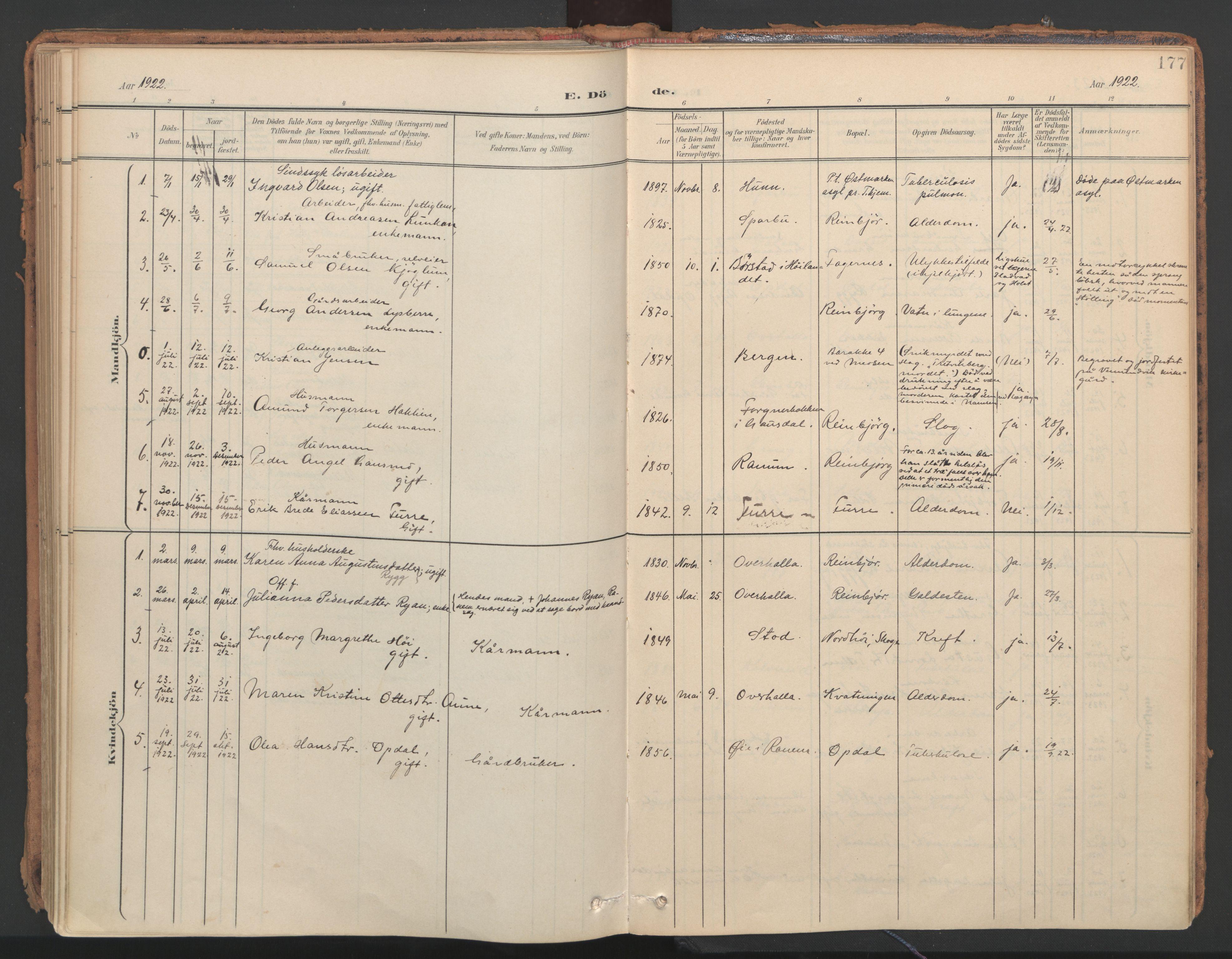 SAT, Ministerialprotokoller, klokkerbøker og fødselsregistre - Nord-Trøndelag, 766/L0564: Ministerialbok nr. 767A02, 1900-1932, s. 177