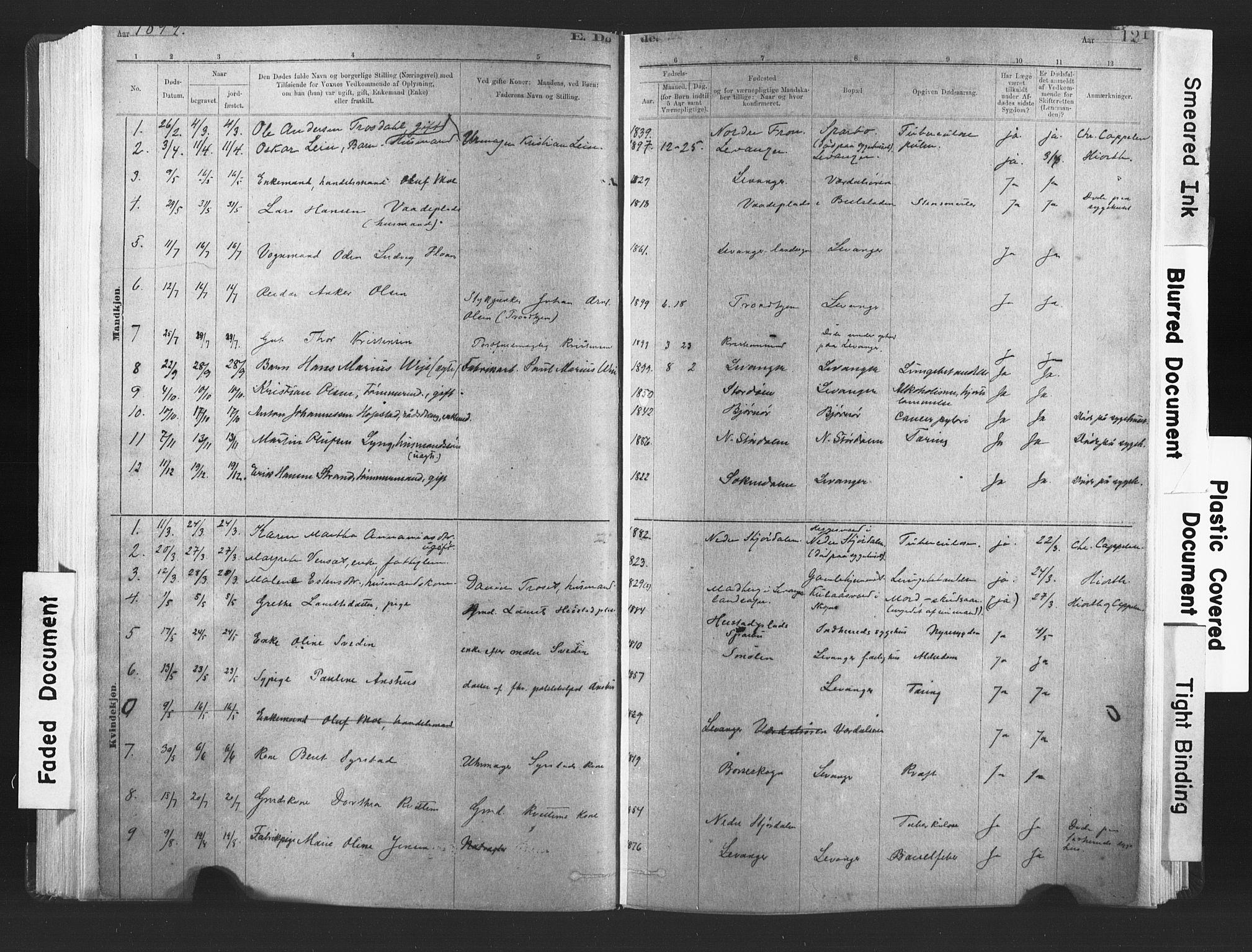 SAT, Ministerialprotokoller, klokkerbøker og fødselsregistre - Nord-Trøndelag, 720/L0189: Ministerialbok nr. 720A05, 1880-1911, s. 121