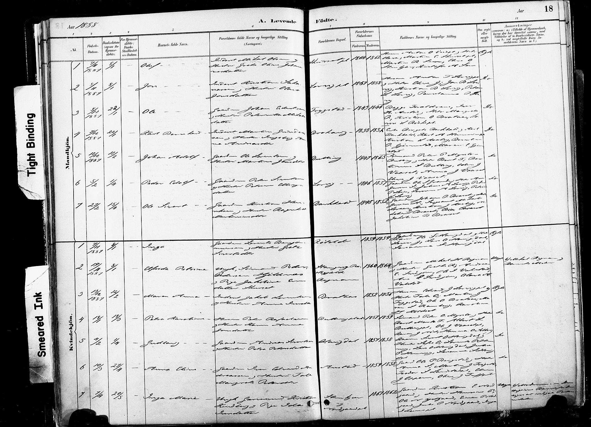 SAT, Ministerialprotokoller, klokkerbøker og fødselsregistre - Nord-Trøndelag, 735/L0351: Ministerialbok nr. 735A10, 1884-1908, s. 18