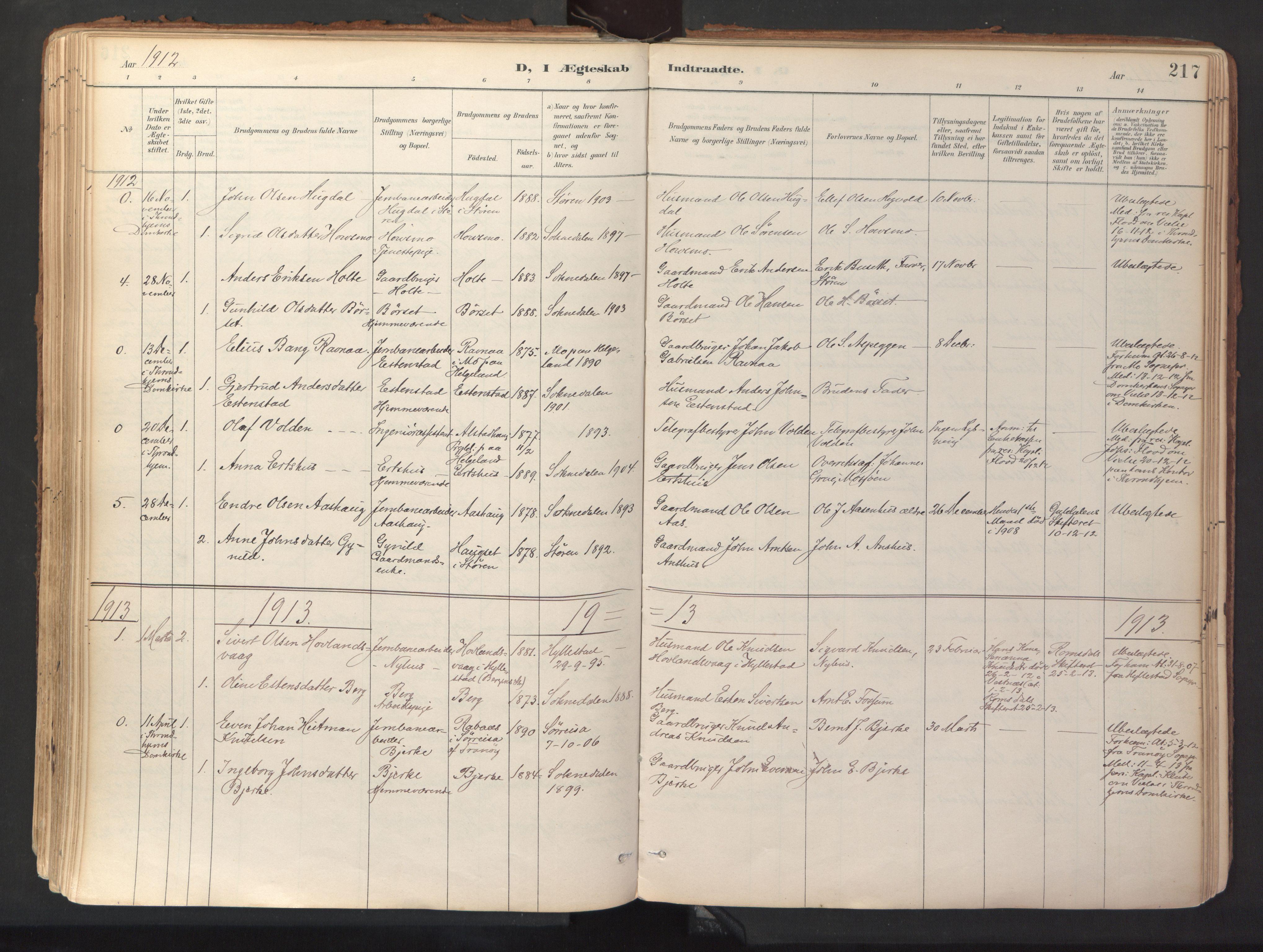 SAT, Ministerialprotokoller, klokkerbøker og fødselsregistre - Sør-Trøndelag, 689/L1041: Ministerialbok nr. 689A06, 1891-1923, s. 217