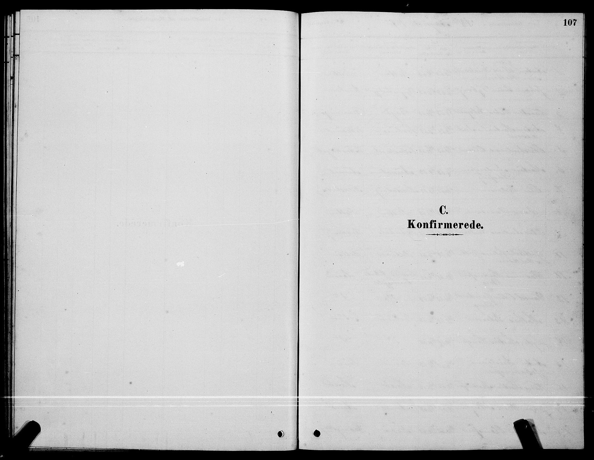 SAT, Ministerialprotokoller, klokkerbøker og fødselsregistre - Sør-Trøndelag, 640/L0585: Klokkerbok nr. 640C03, 1878-1891, s. 107