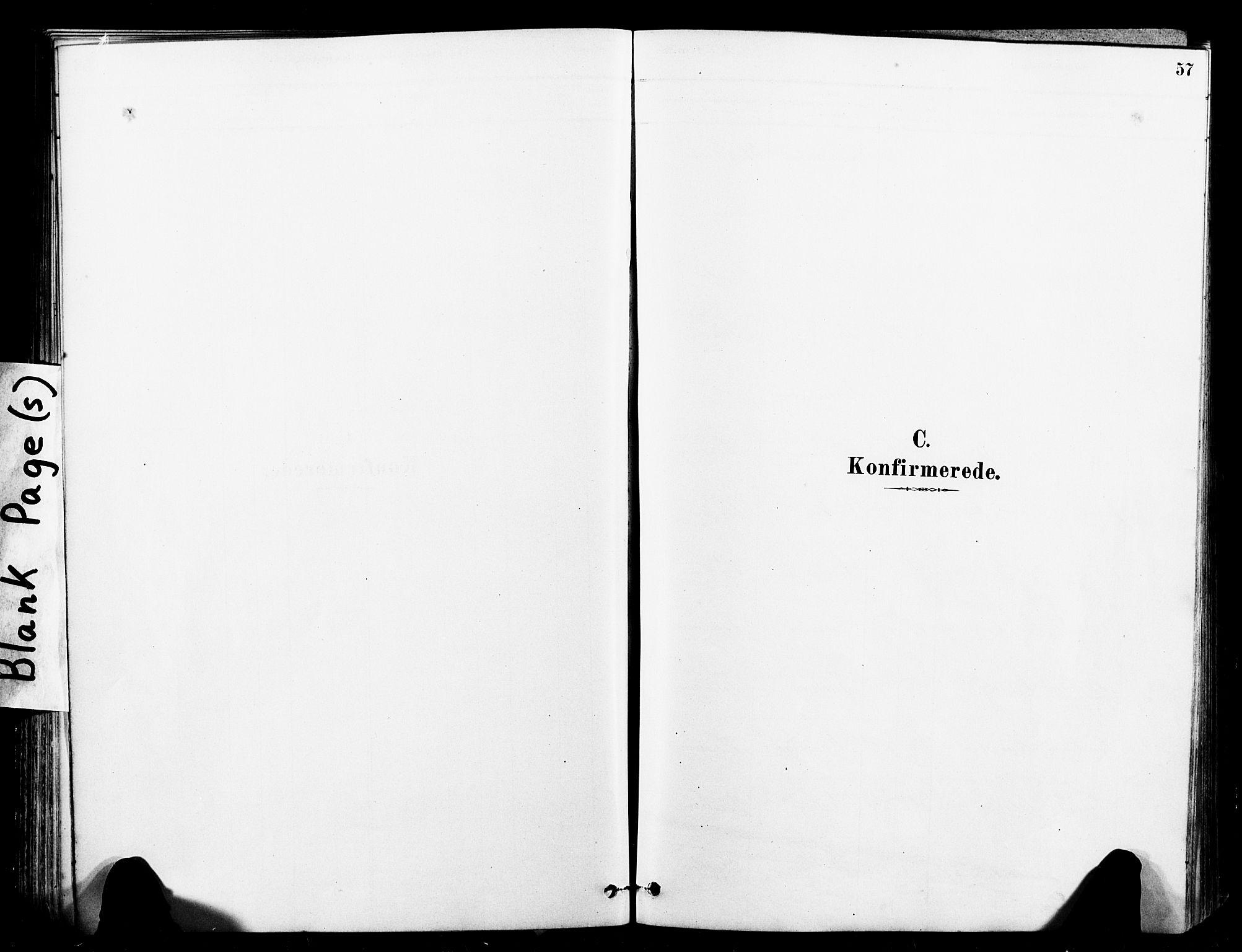 SAT, Ministerialprotokoller, klokkerbøker og fødselsregistre - Sør-Trøndelag, 641/L0595: Ministerialbok nr. 641A01, 1882-1897, s. 57