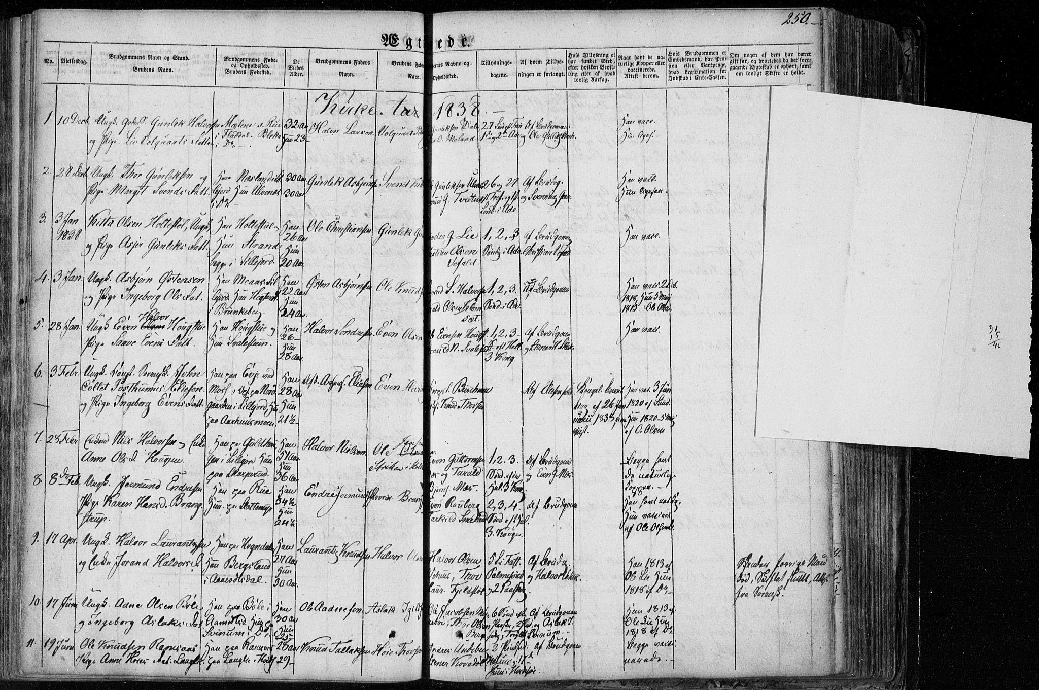 SAKO, Seljord kirkebøker, F/Fa/L0011: Ministerialbok nr. I 11, 1831-1849, s. 250