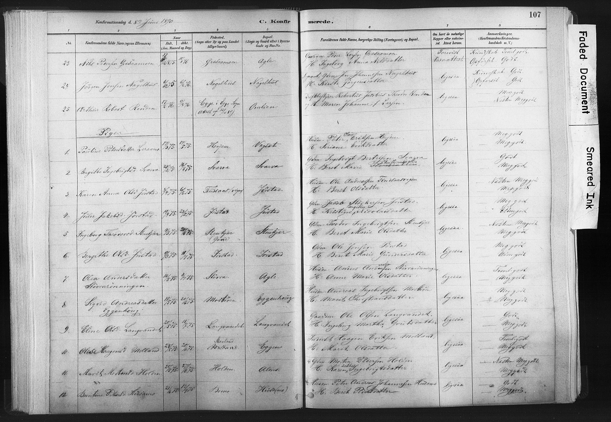SAT, Ministerialprotokoller, klokkerbøker og fødselsregistre - Nord-Trøndelag, 749/L0474: Ministerialbok nr. 749A08, 1887-1903, s. 107