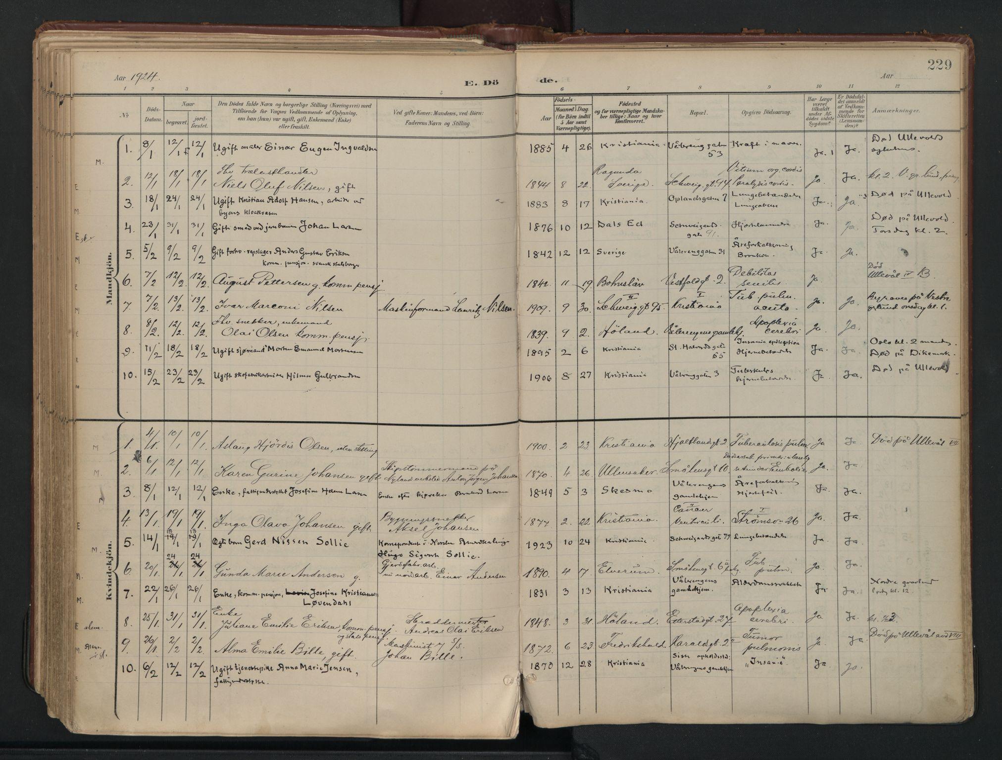 SAO, Vålerengen prestekontor Kirkebøker, F/Fa/L0003: Ministerialbok nr. 3, 1899-1930, s. 229
