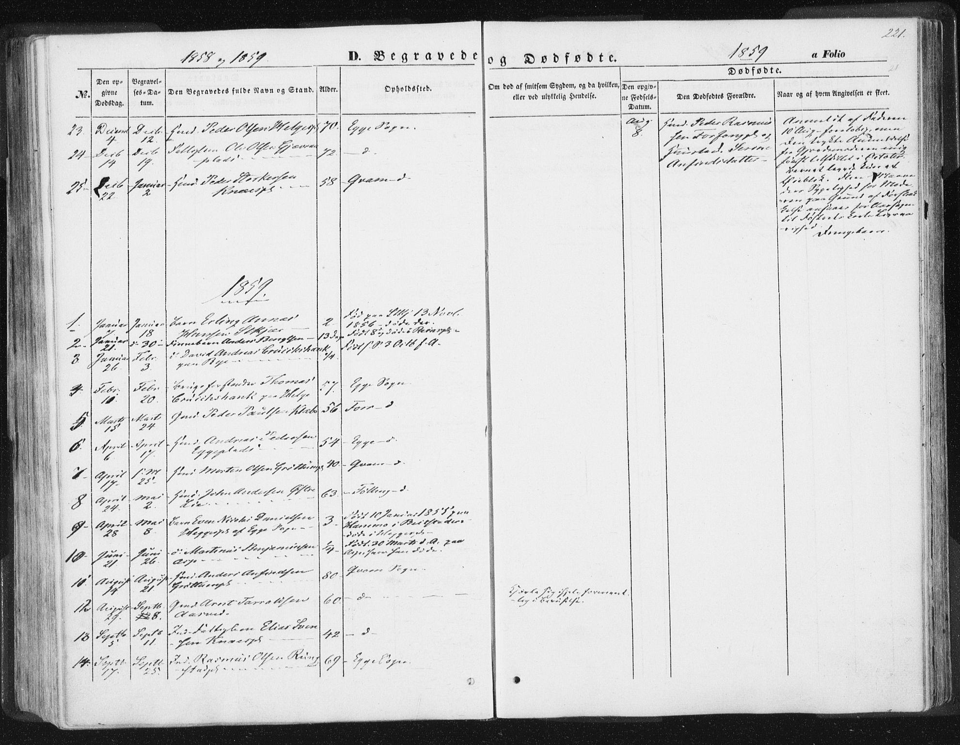 SAT, Ministerialprotokoller, klokkerbøker og fødselsregistre - Nord-Trøndelag, 746/L0446: Ministerialbok nr. 746A05, 1846-1859, s. 221