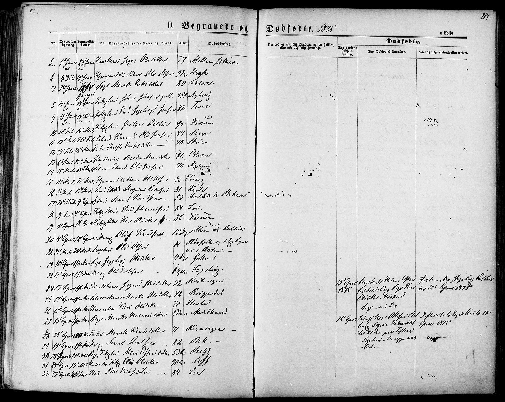 SAT, Ministerialprotokoller, klokkerbøker og fødselsregistre - Sør-Trøndelag, 678/L0900: Ministerialbok nr. 678A09, 1872-1881, s. 214