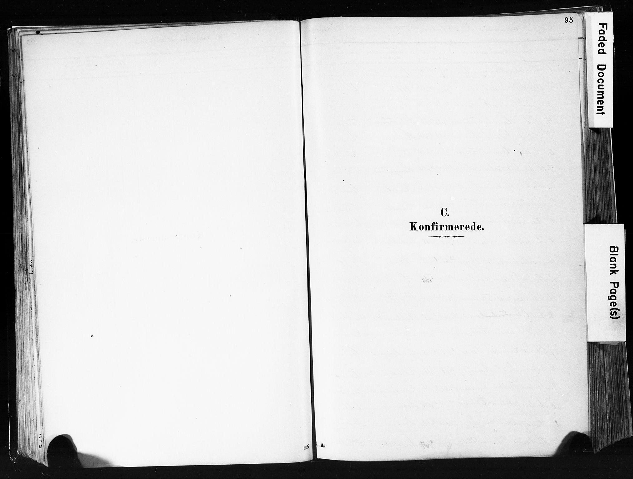SAKO, Eidanger kirkebøker, F/Fa/L0012: Ministerialbok nr. 12, 1879-1900, s. 95