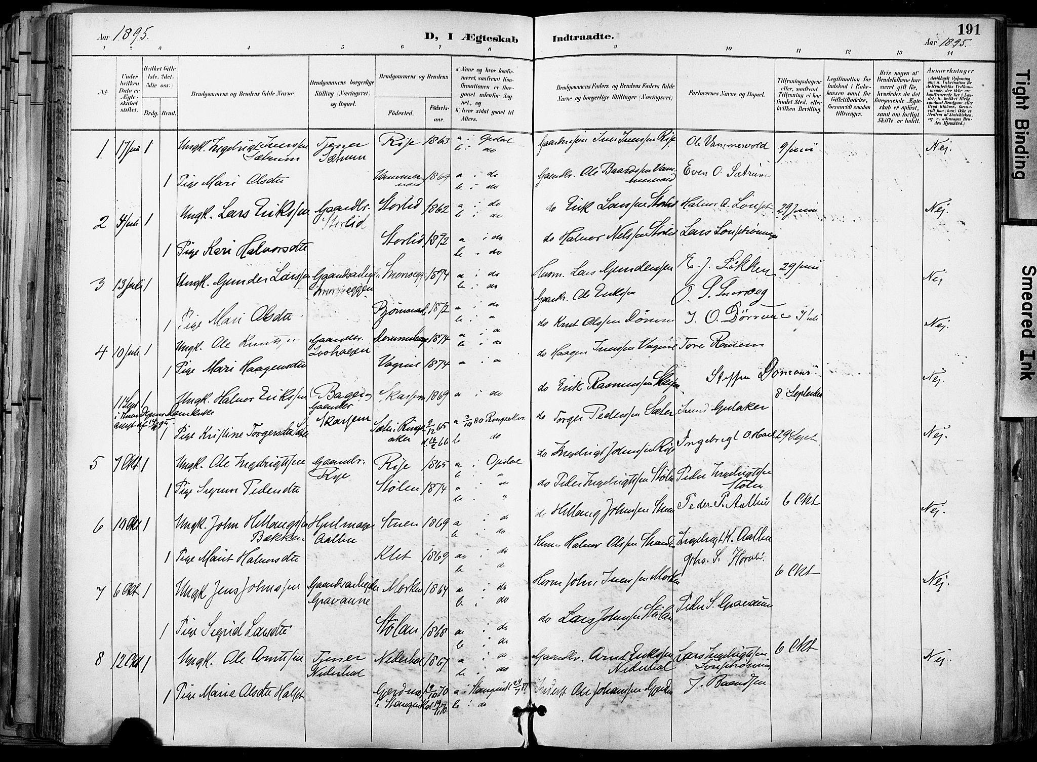 SAT, Ministerialprotokoller, klokkerbøker og fødselsregistre - Sør-Trøndelag, 678/L0902: Ministerialbok nr. 678A11, 1895-1911, s. 191