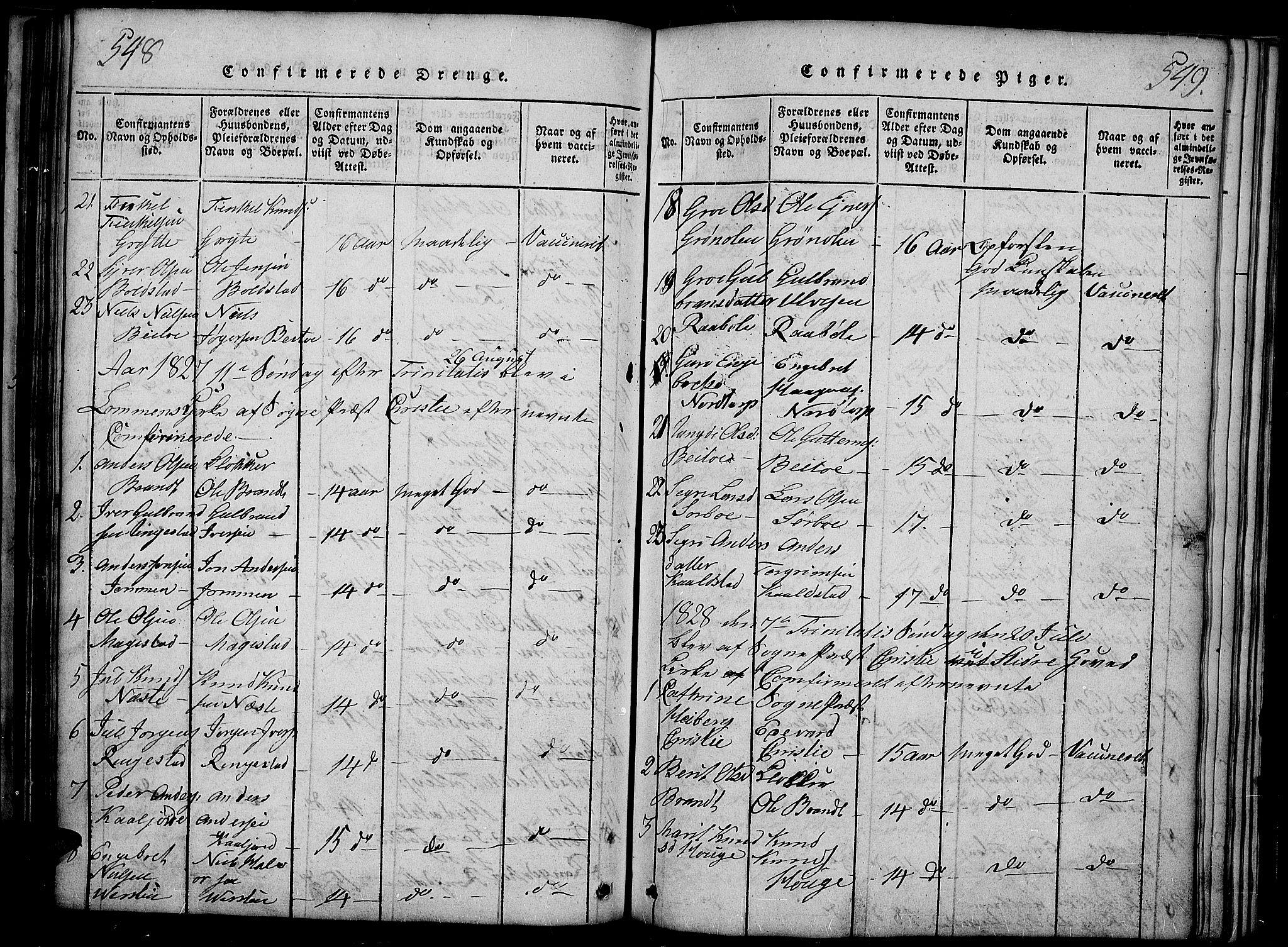 SAH, Slidre prestekontor, Ministerialbok nr. 2, 1814-1830, s. 548-549