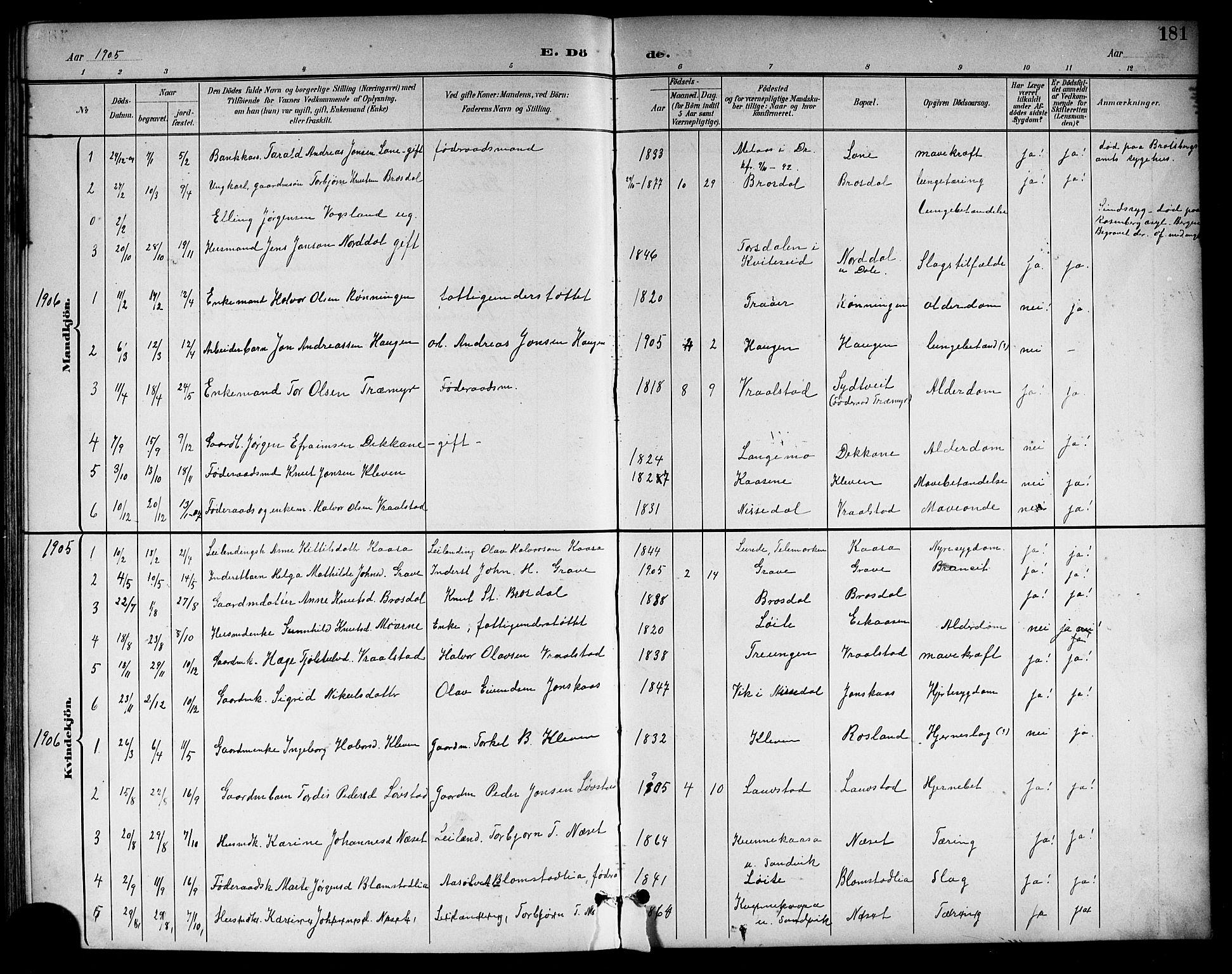 SAKO, Drangedal kirkebøker, G/Gb/L0002: Klokkerbok nr. II 2, 1895-1918, s. 181