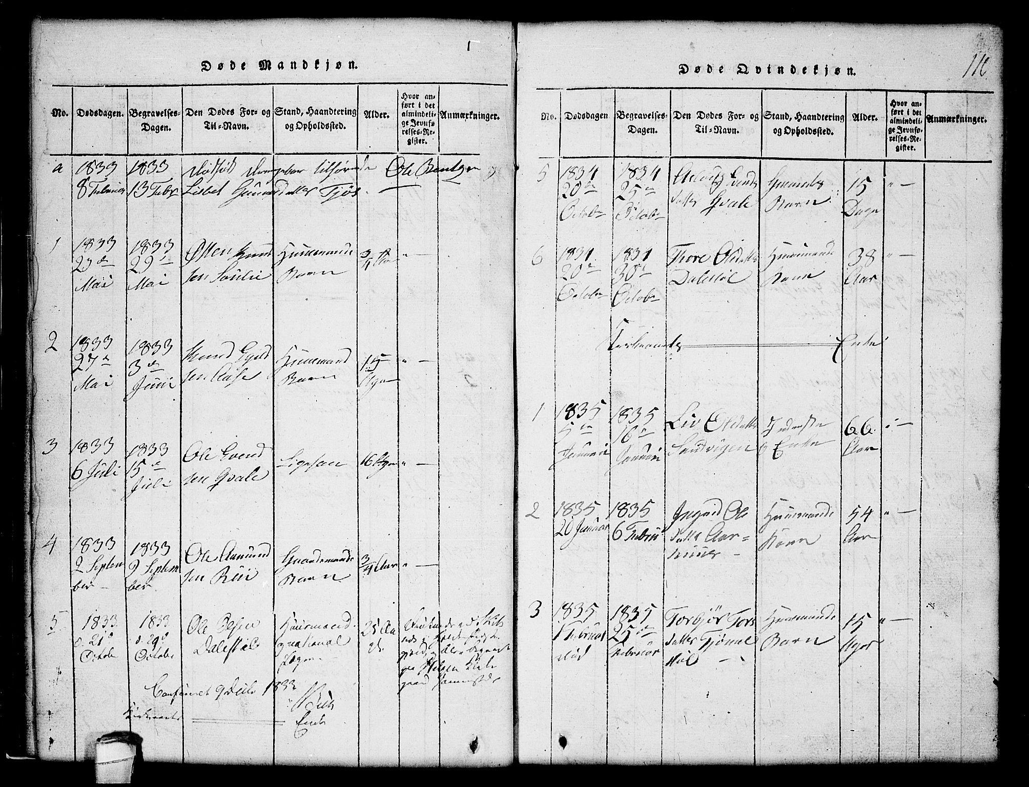 SAKO, Lårdal kirkebøker, G/Gc/L0001: Klokkerbok nr. III 1, 1815-1854, s. 110
