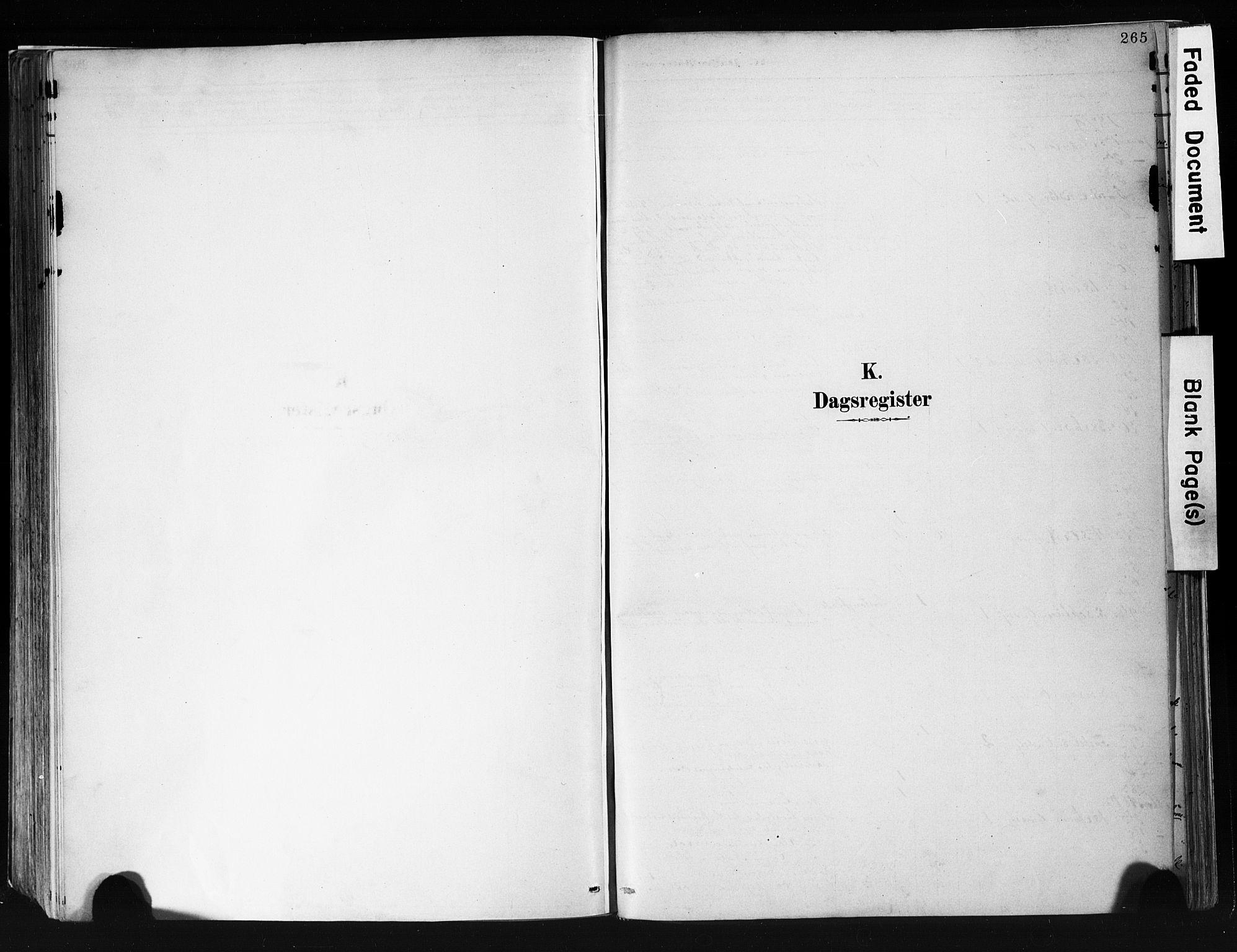 SAKO, Eidanger kirkebøker, F/Fa/L0012: Ministerialbok nr. 12, 1879-1900, s. 265