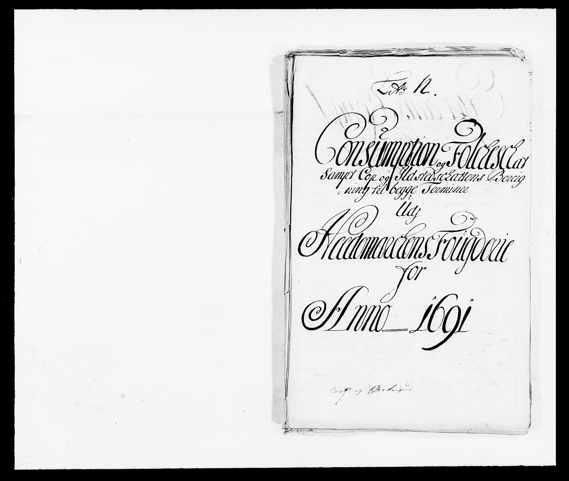 RA, Rentekammeret inntil 1814, Reviderte regnskaper, Fogderegnskap, R16/L1030: Fogderegnskap Hedmark, 1689-1691, s. 374