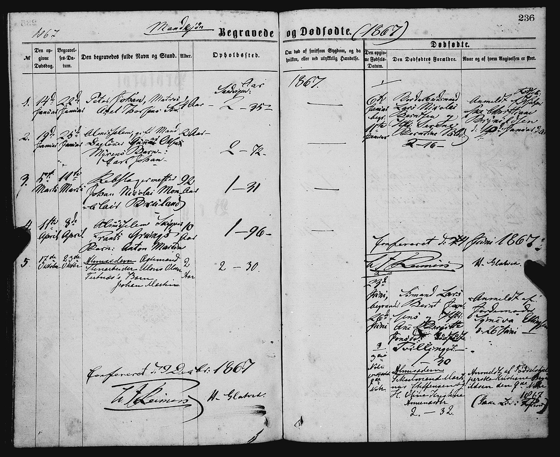 SAB, Sandviken Sokneprestembete, H/Ha/L0001: Ministerialbok nr. A 1, 1867-1877, s. 236