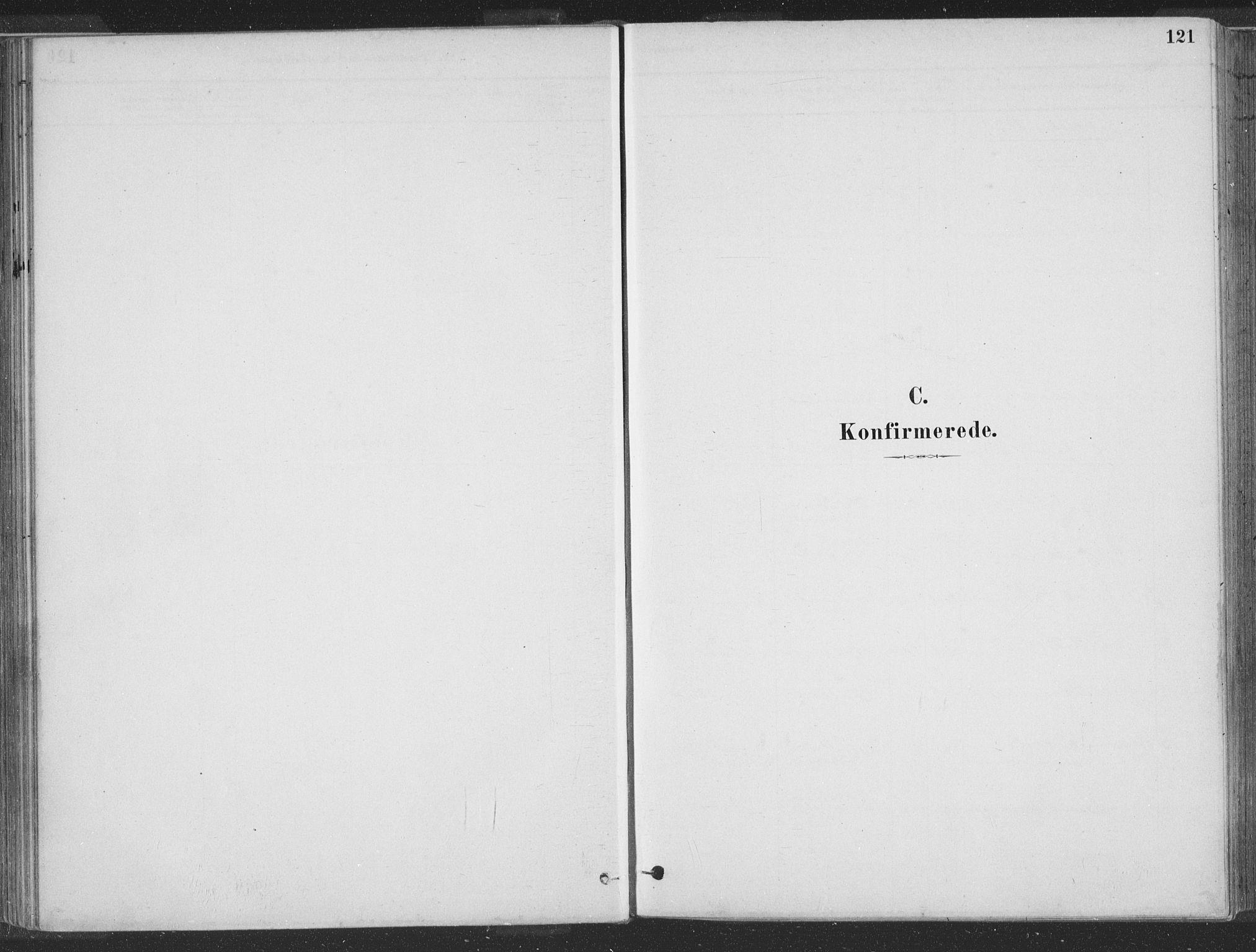 SAST, Hå sokneprestkontor, 30BA/L0010: Ministerialbok nr. A 9, 1879-1896, s. 121