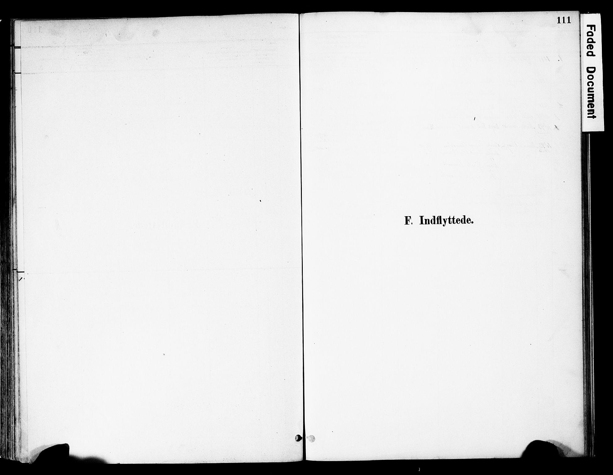 SAH, Vestre Slidre prestekontor, Ministerialbok nr. 5, 1881-1912, s. 111