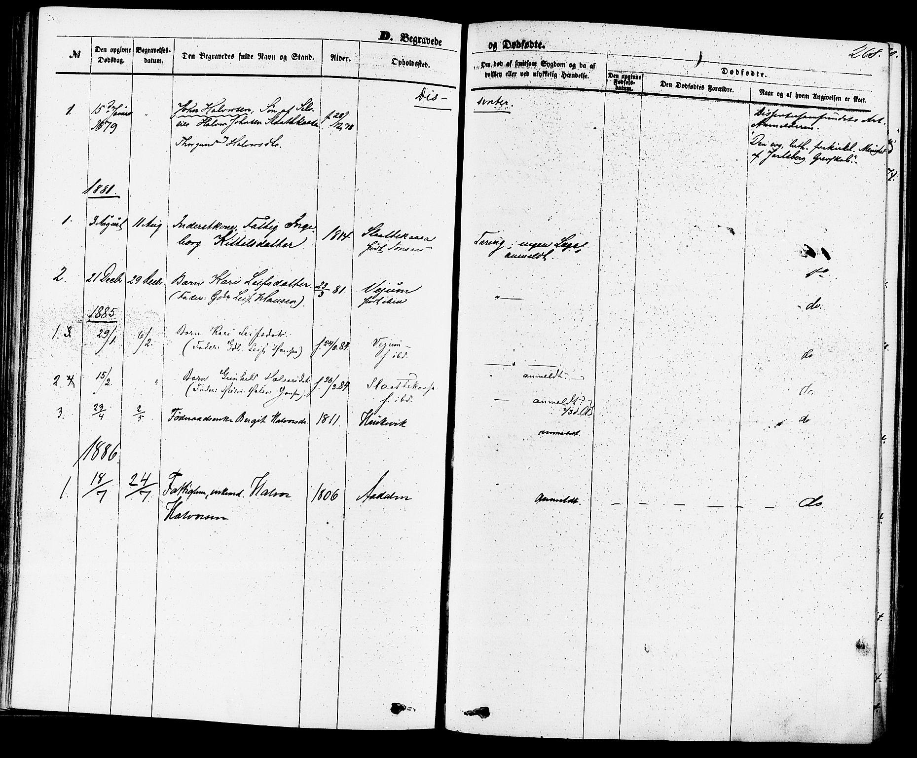 SAKO, Sauherad kirkebøker, F/Fa/L0008: Ministerialbok nr. I 8, 1873-1886, s. 268
