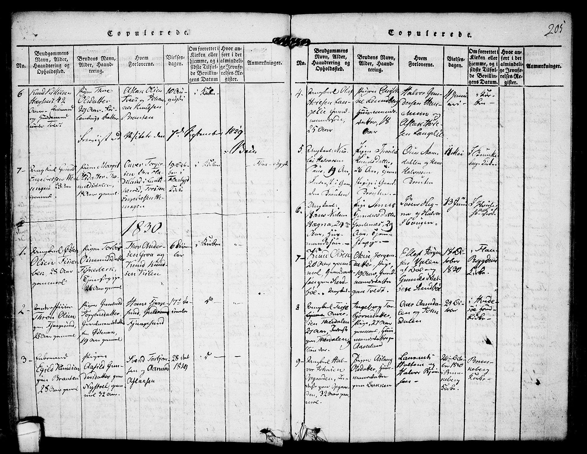 SAKO, Kviteseid kirkebøker, F/Fa/L0005: Ministerialbok nr. I 5, 1815-1836, s. 205