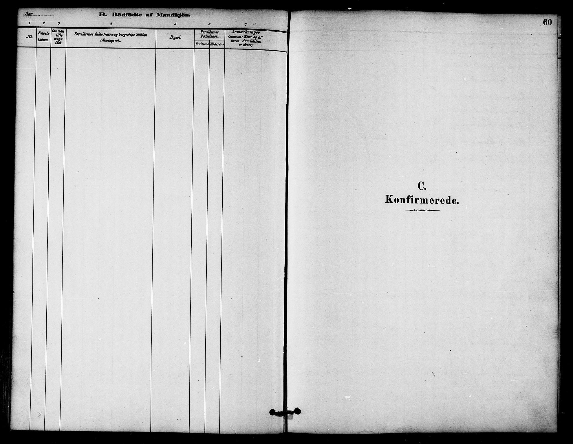 SAT, Ministerialprotokoller, klokkerbøker og fødselsregistre - Nord-Trøndelag, 766/L0563: Ministerialbok nr. 767A01, 1881-1899, s. 60