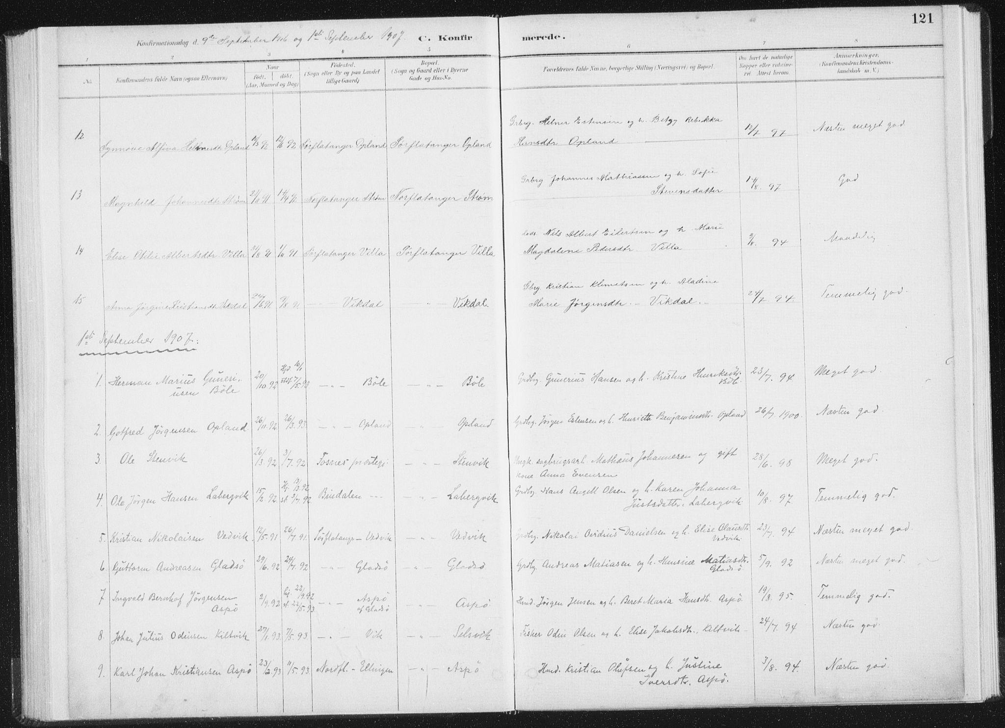SAT, Ministerialprotokoller, klokkerbøker og fødselsregistre - Nord-Trøndelag, 771/L0597: Ministerialbok nr. 771A04, 1885-1910, s. 121