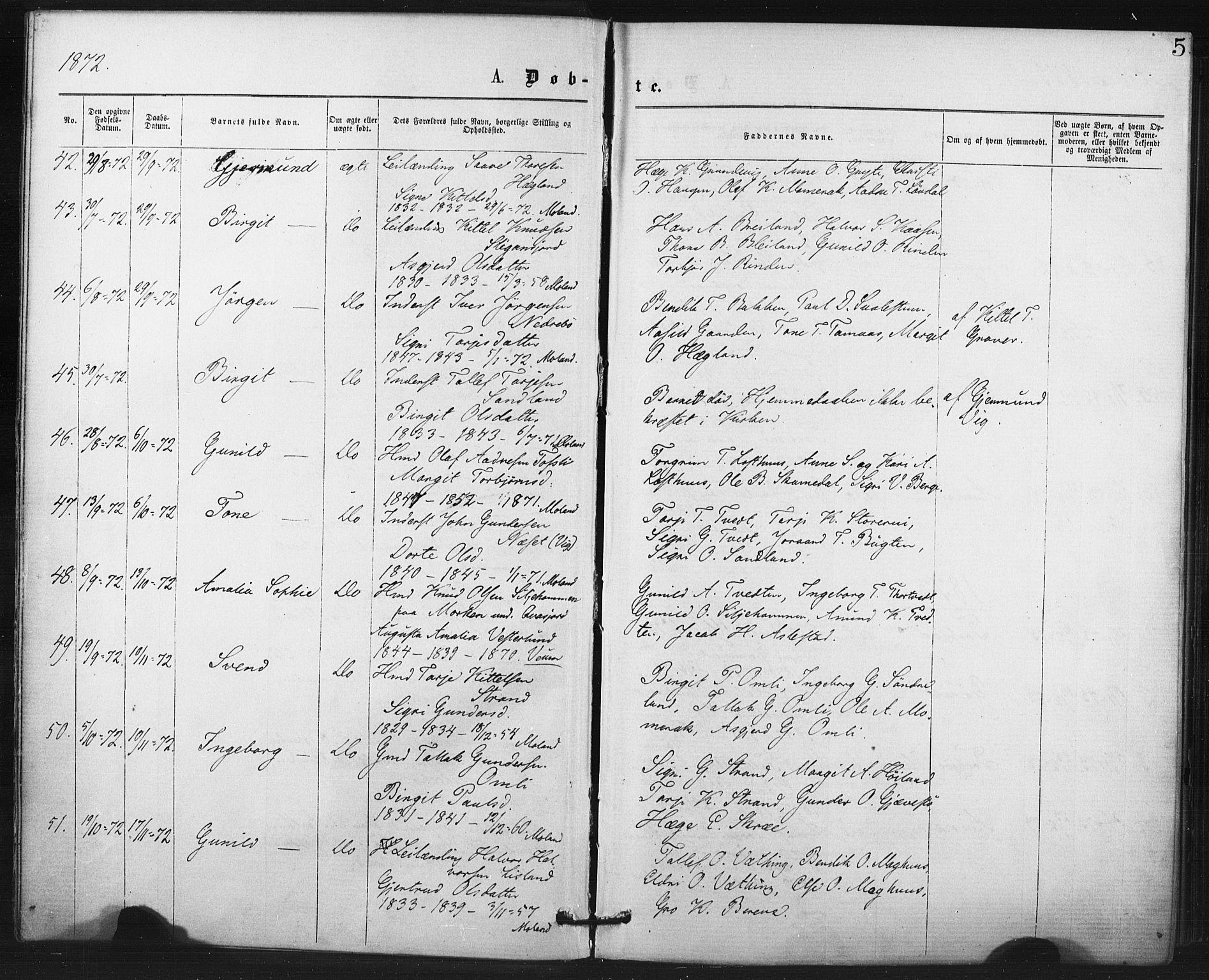 SAKO, Fyresdal kirkebøker, F/Fa/L0006: Ministerialbok nr. I 6, 1872-1886, s. 5