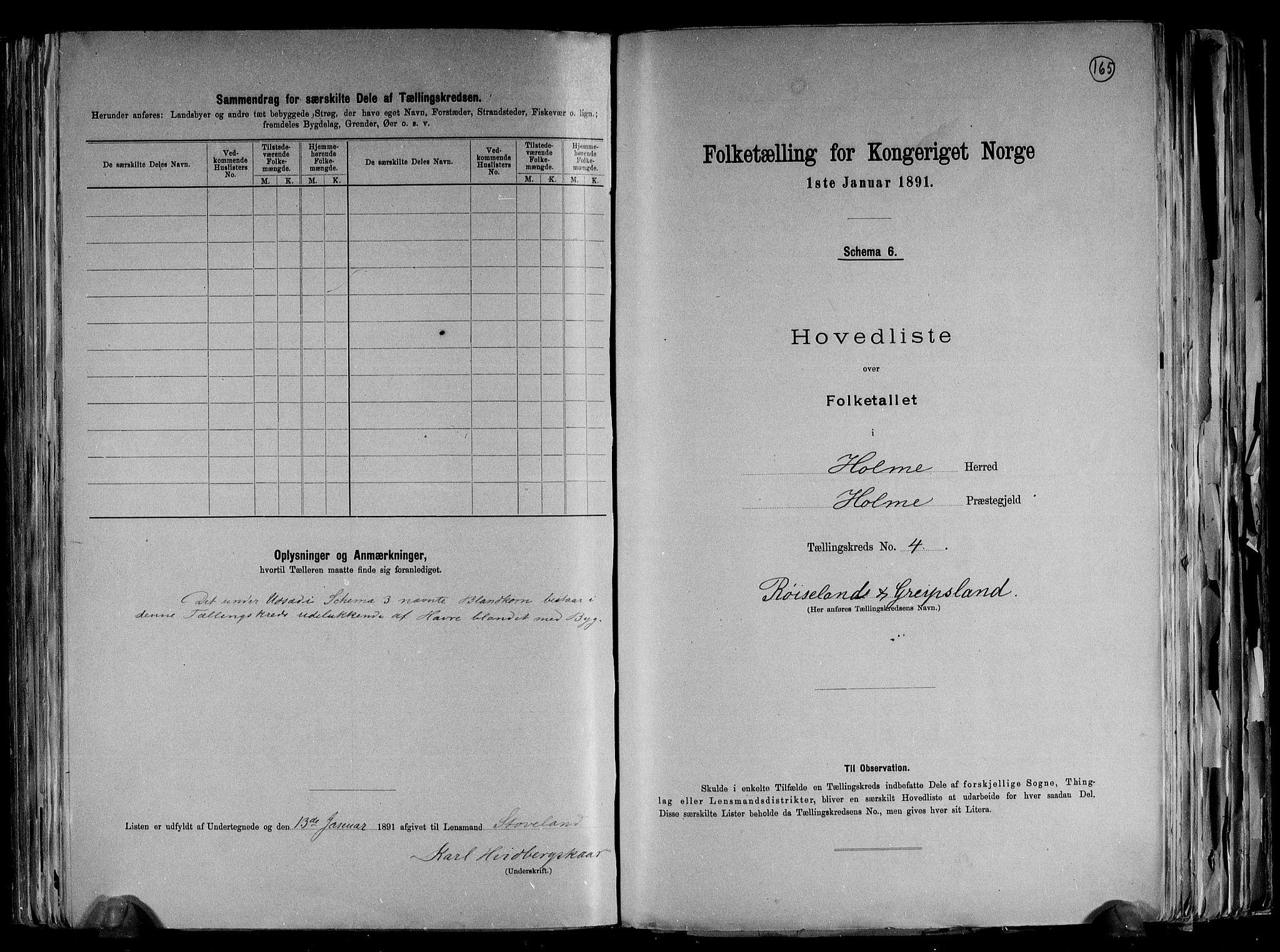 RA, Folketelling 1891 for 1020 Holum herred, 1891, s. 13