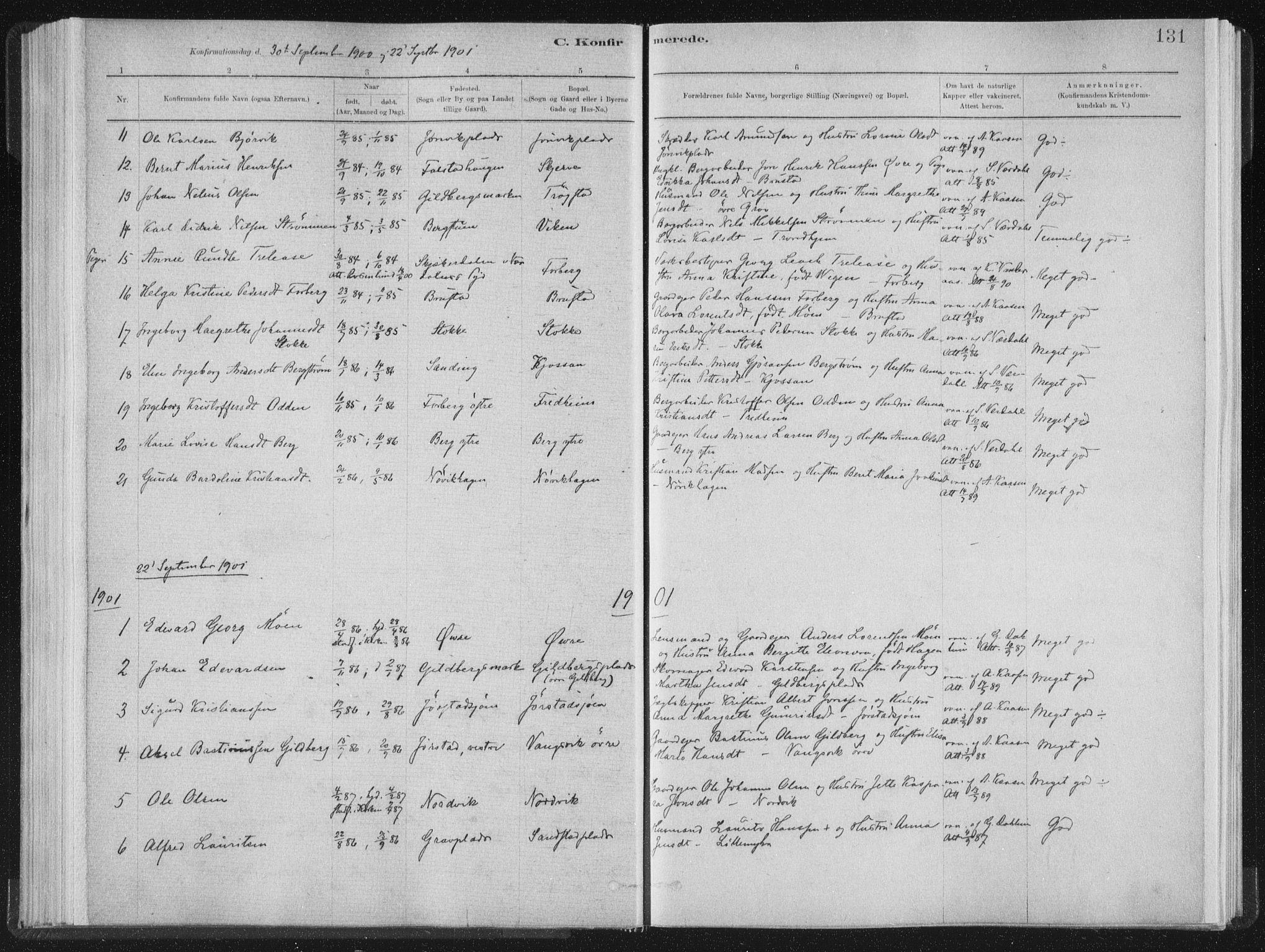 SAT, Ministerialprotokoller, klokkerbøker og fødselsregistre - Nord-Trøndelag, 722/L0220: Ministerialbok nr. 722A07, 1881-1908, s. 131
