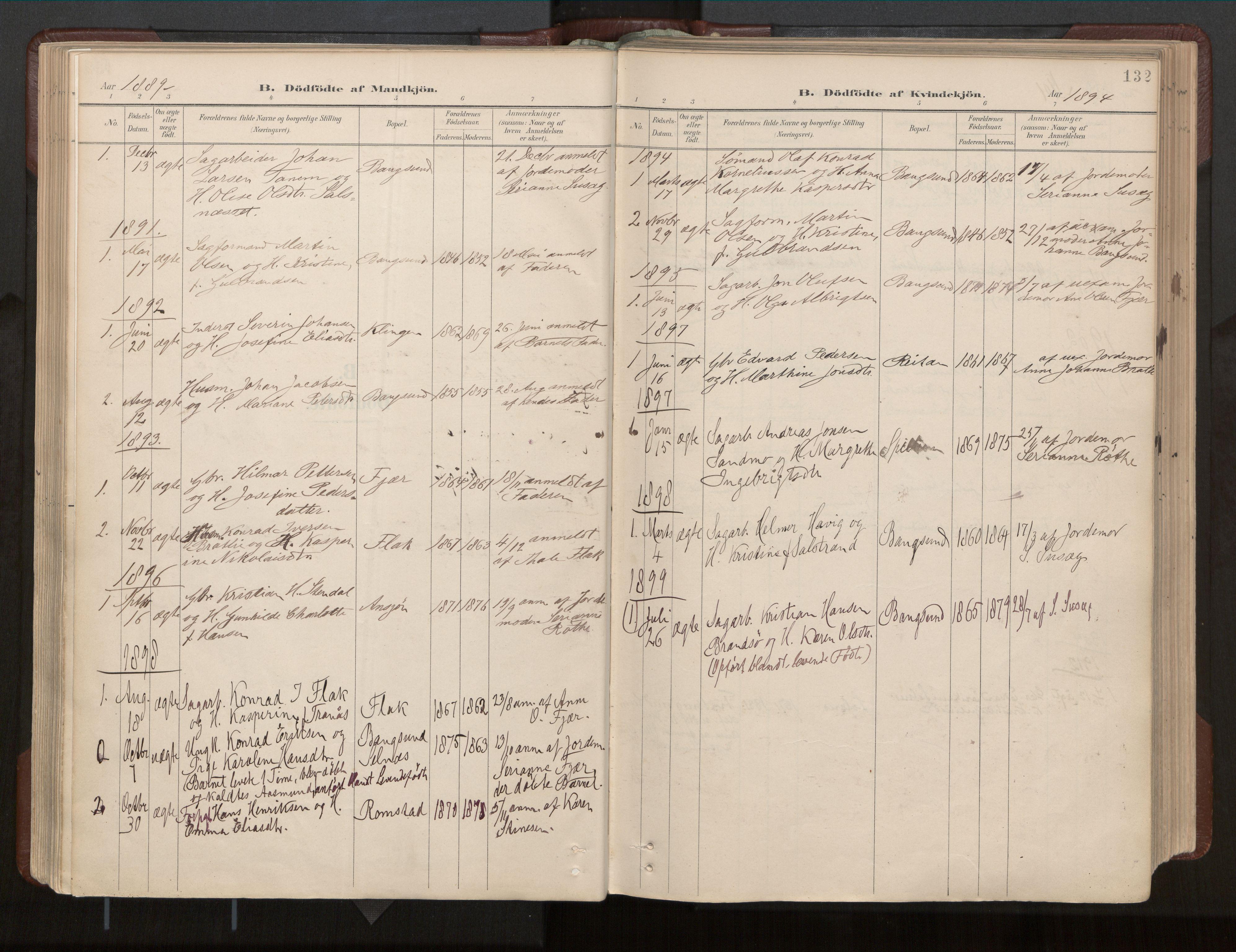 SAT, Ministerialprotokoller, klokkerbøker og fødselsregistre - Nord-Trøndelag, 770/L0589: Ministerialbok nr. 770A03, 1887-1929, s. 132