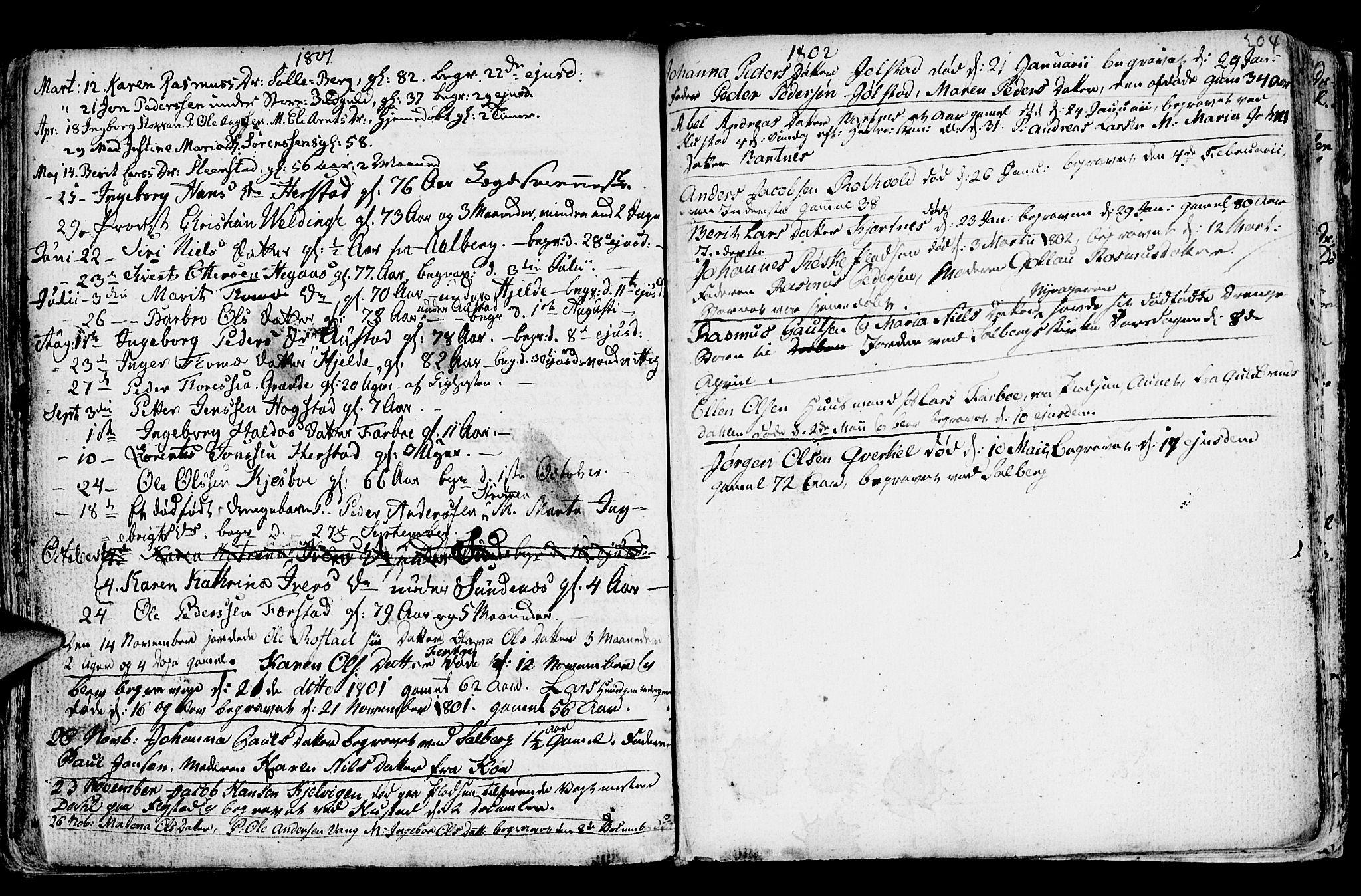 SAT, Ministerialprotokoller, klokkerbøker og fødselsregistre - Nord-Trøndelag, 730/L0273: Ministerialbok nr. 730A02, 1762-1802, s. 204