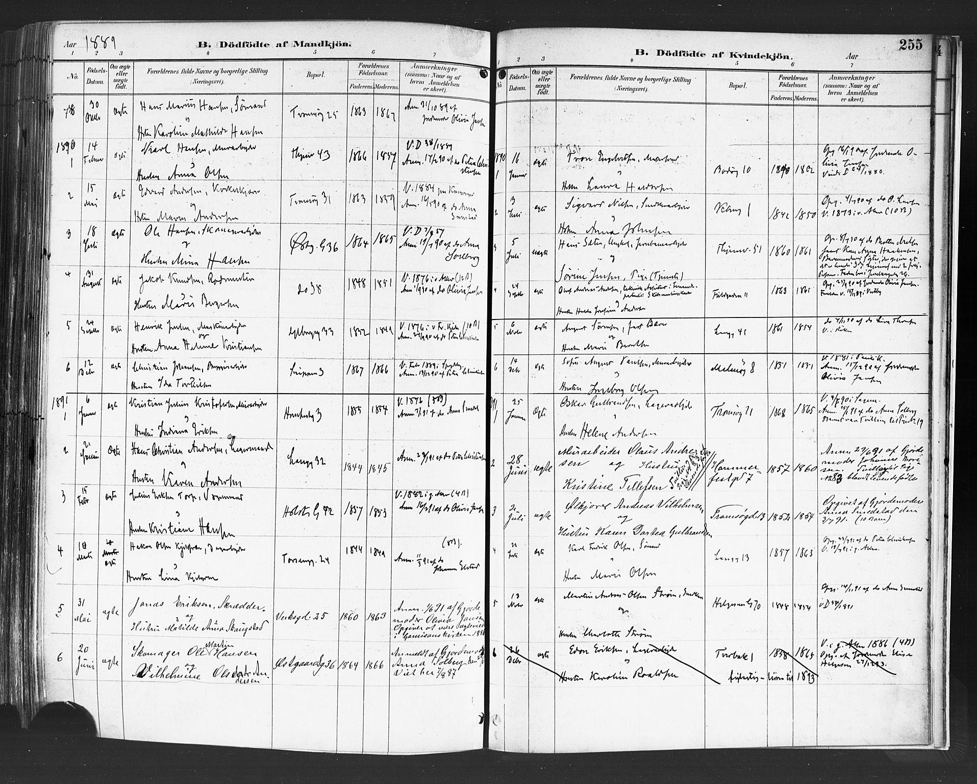 SAO, Petrus prestekontor Kirkebøker, F/Fa/L0004: Ministerialbok nr. 4, 1888-1898, s. 255