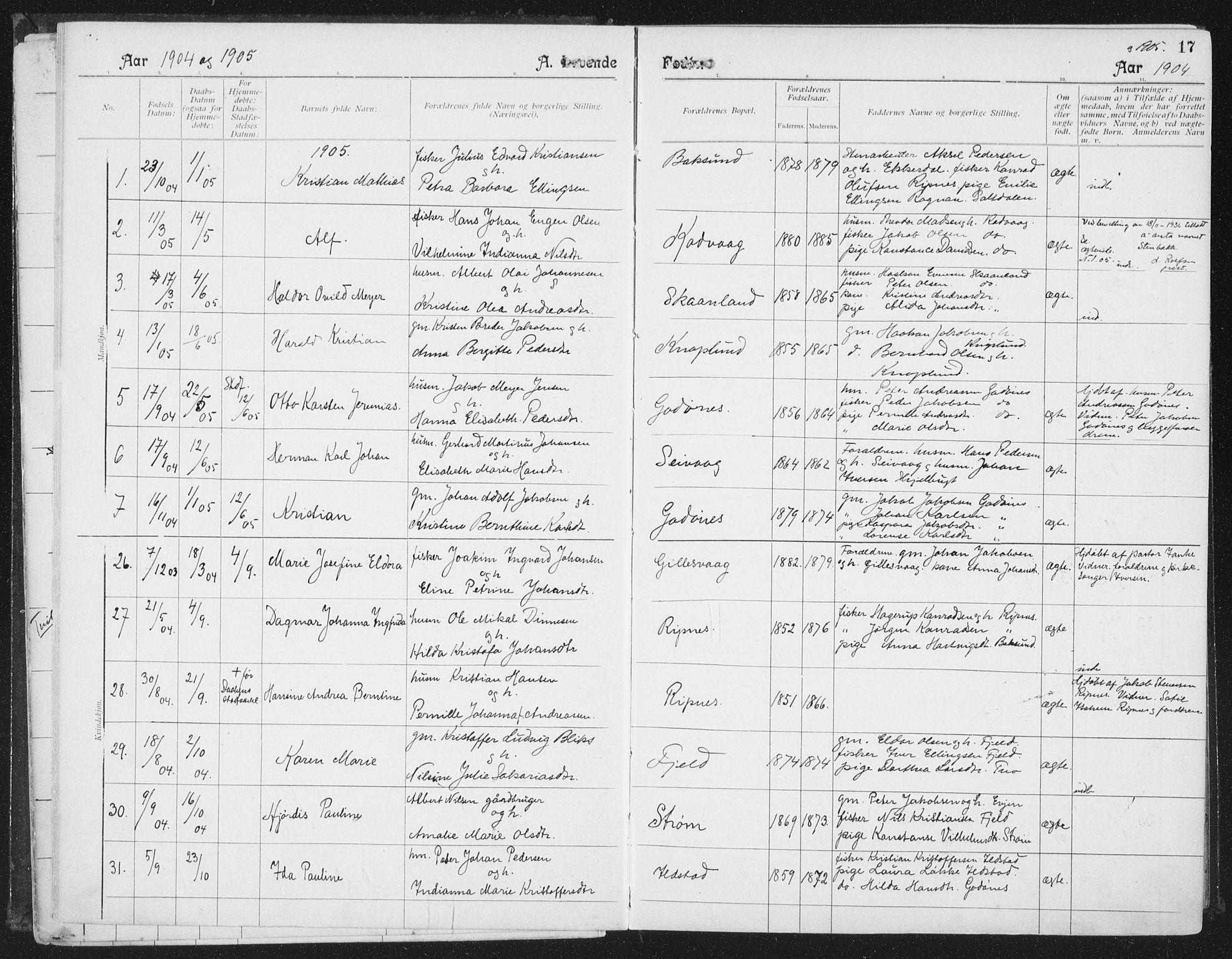 SAT, Ministerialprotokoller, klokkerbøker og fødselsregistre - Nordland, 804/L0081: Ministerialbok nr. 804A02, 1901-1915, s. 17