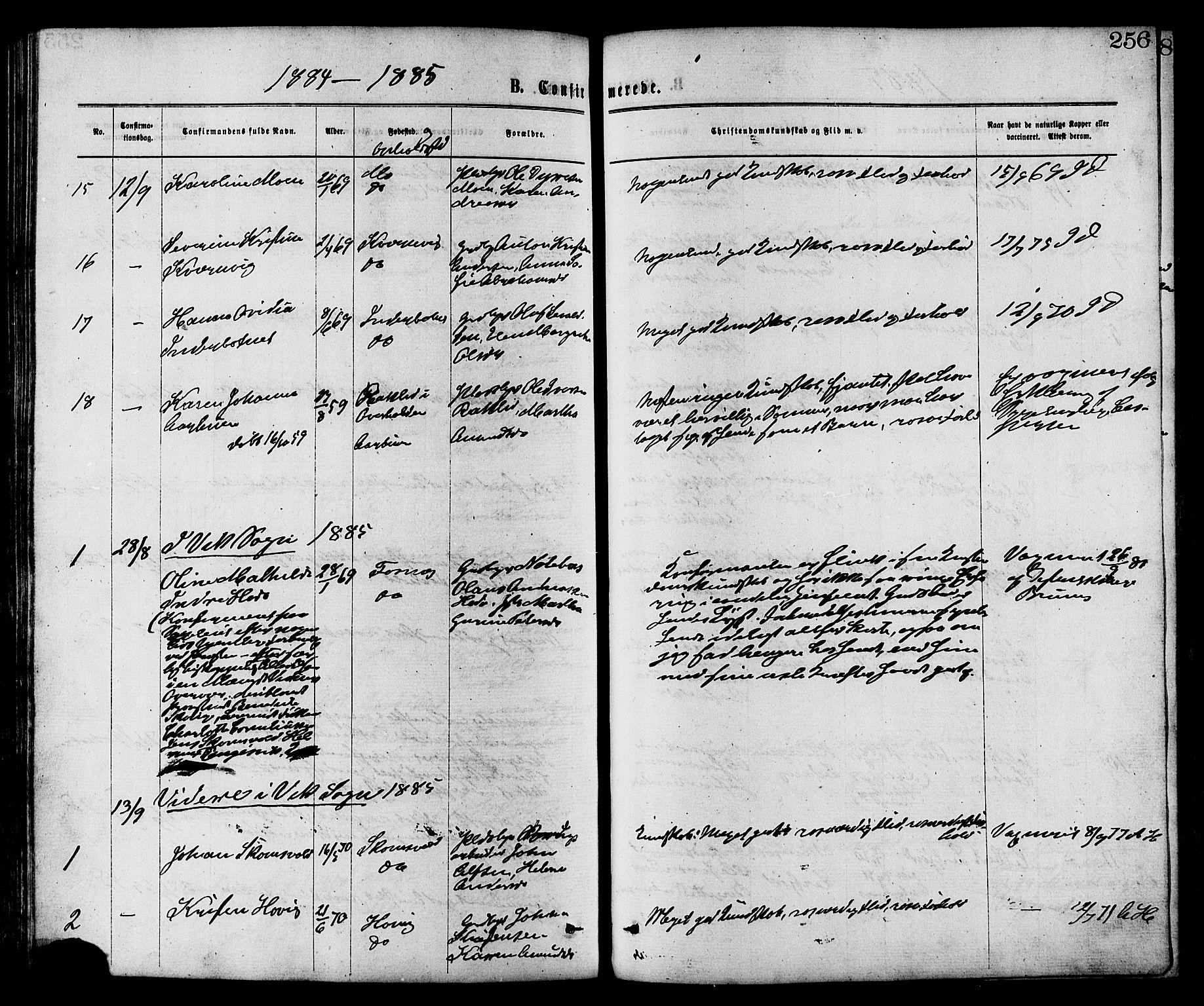 SAT, Ministerialprotokoller, klokkerbøker og fødselsregistre - Nord-Trøndelag, 773/L0616: Ministerialbok nr. 773A07, 1870-1887, s. 256