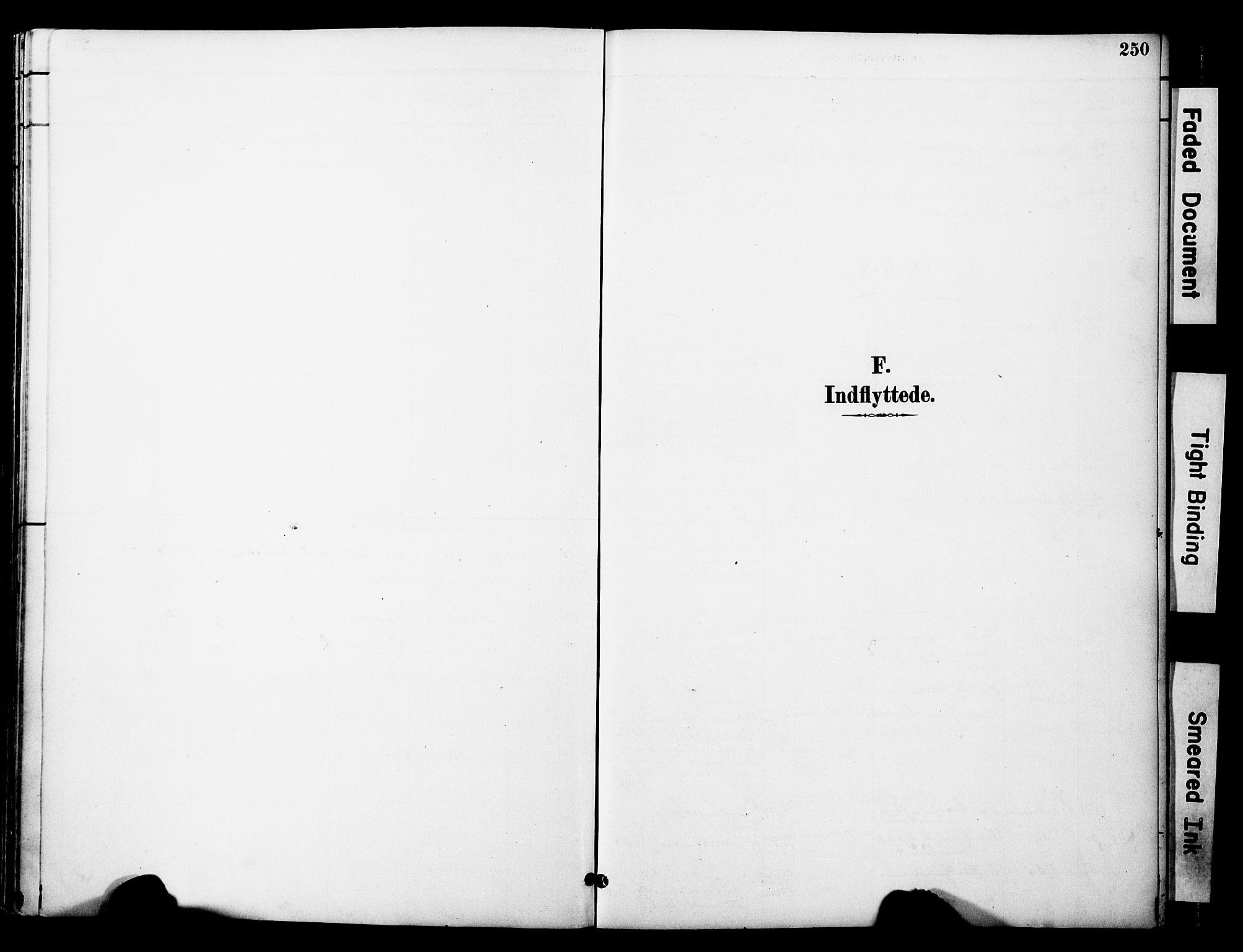 SAT, Ministerialprotokoller, klokkerbøker og fødselsregistre - Nord-Trøndelag, 774/L0628: Ministerialbok nr. 774A02, 1887-1903, s. 250
