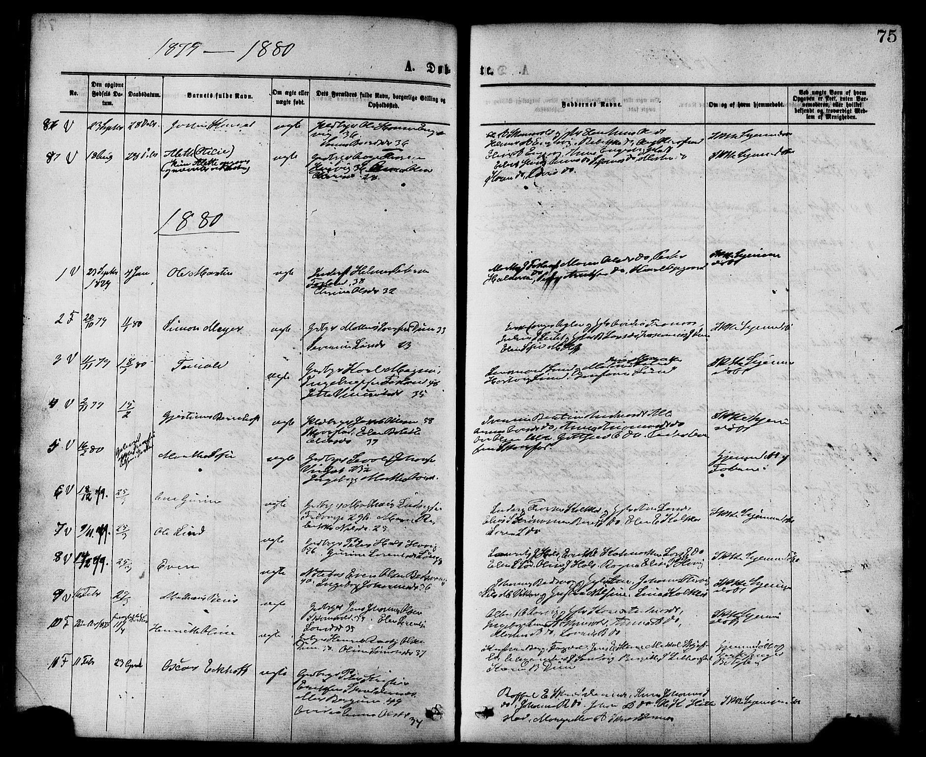 SAT, Ministerialprotokoller, klokkerbøker og fødselsregistre - Nord-Trøndelag, 773/L0616: Ministerialbok nr. 773A07, 1870-1887, s. 75