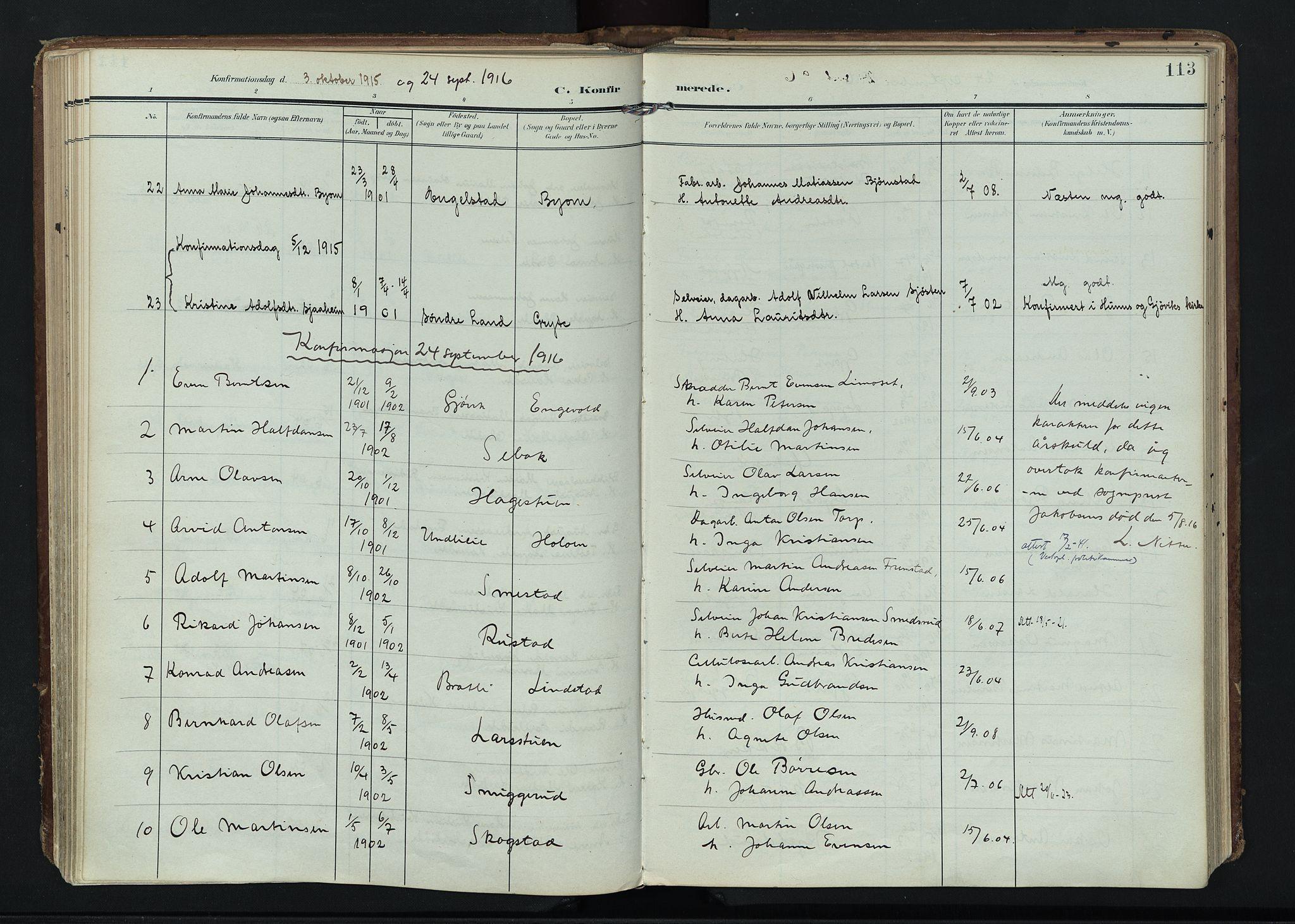 SAH, Vardal prestekontor, H/Ha/Haa/L0020: Ministerialbok nr. 20, 1907-1921, s. 113