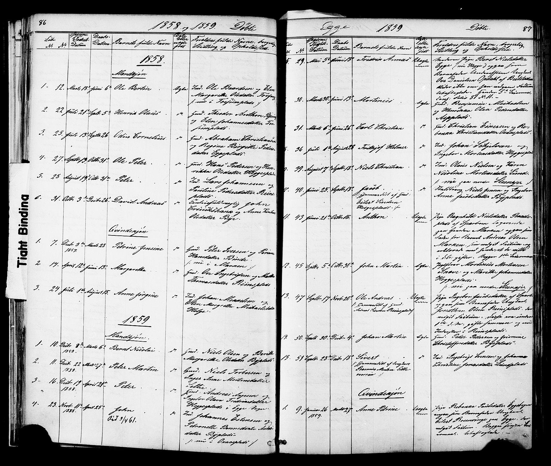 SAT, Ministerialprotokoller, klokkerbøker og fødselsregistre - Nord-Trøndelag, 739/L0367: Ministerialbok nr. 739A01 /3, 1838-1868, s. 86-87