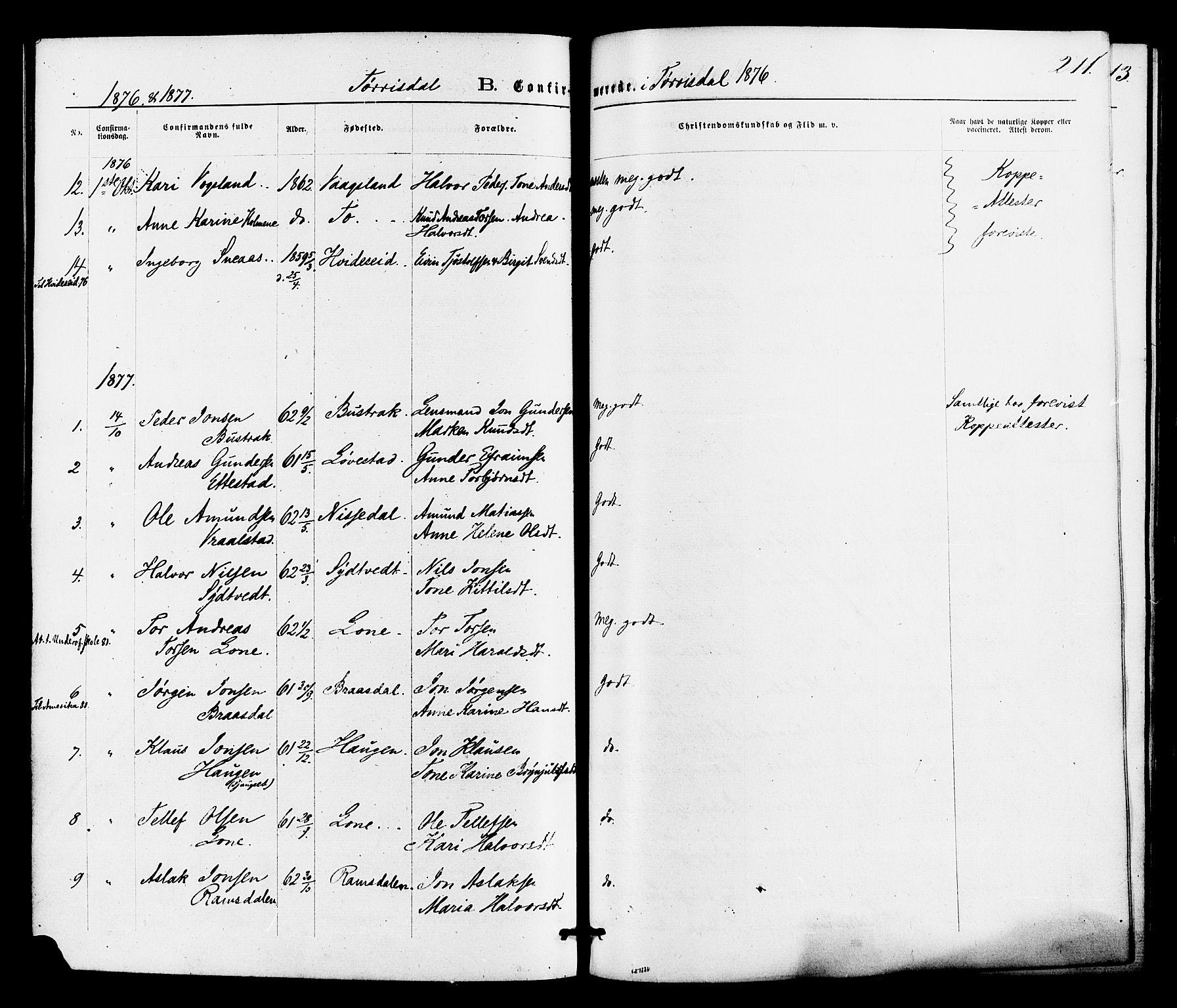 SAKO, Drangedal kirkebøker, F/Fa/L0009: Ministerialbok nr. 9 /2, 1872-1884, s. 211